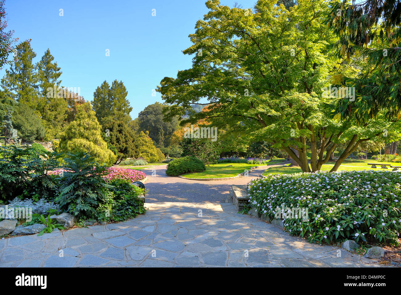 Alleys and walkways among green lawns and colorful trees at botanic ...