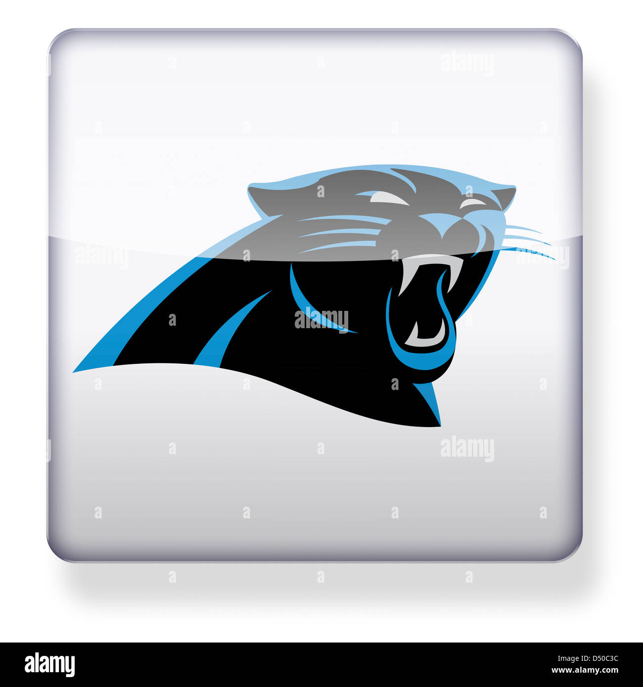 panthers cut out stock images u0026 pictures alamy