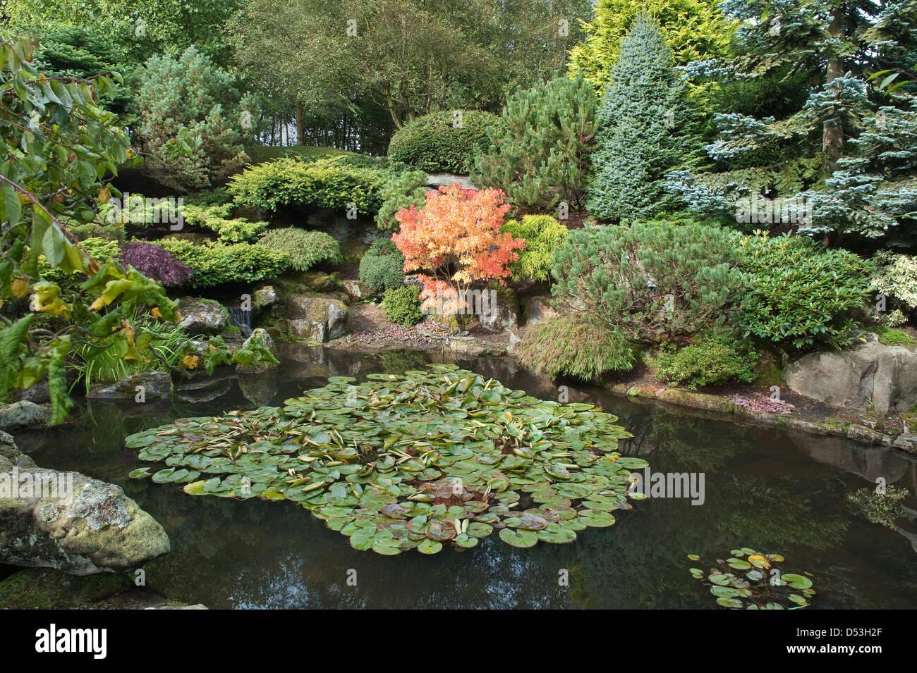 Pond in a rock garden design by bahaa seedhom north for Free rock garden designs