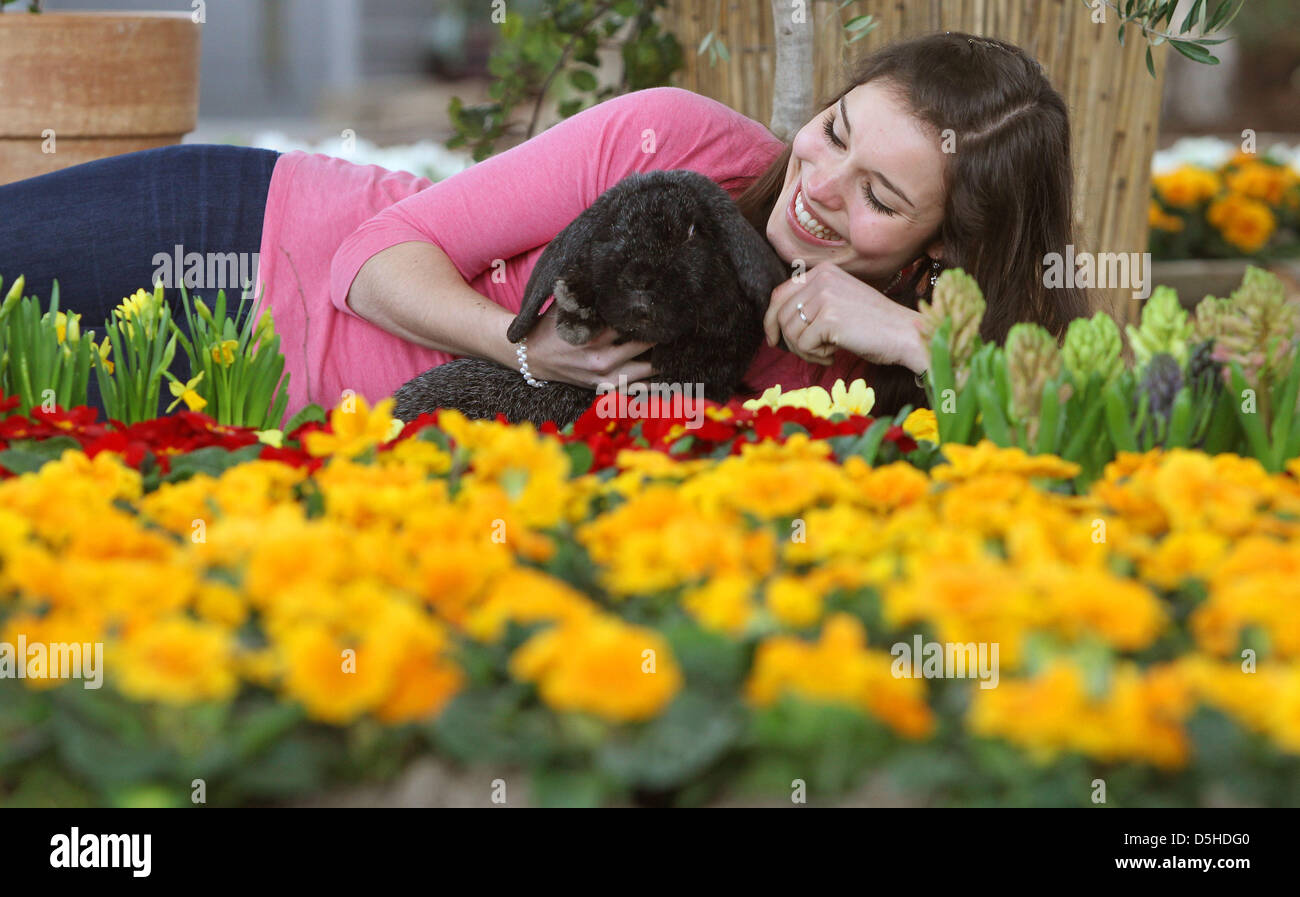 Mariella Bremer lays with an \'\'English Lop\'\' in a garden at the ...
