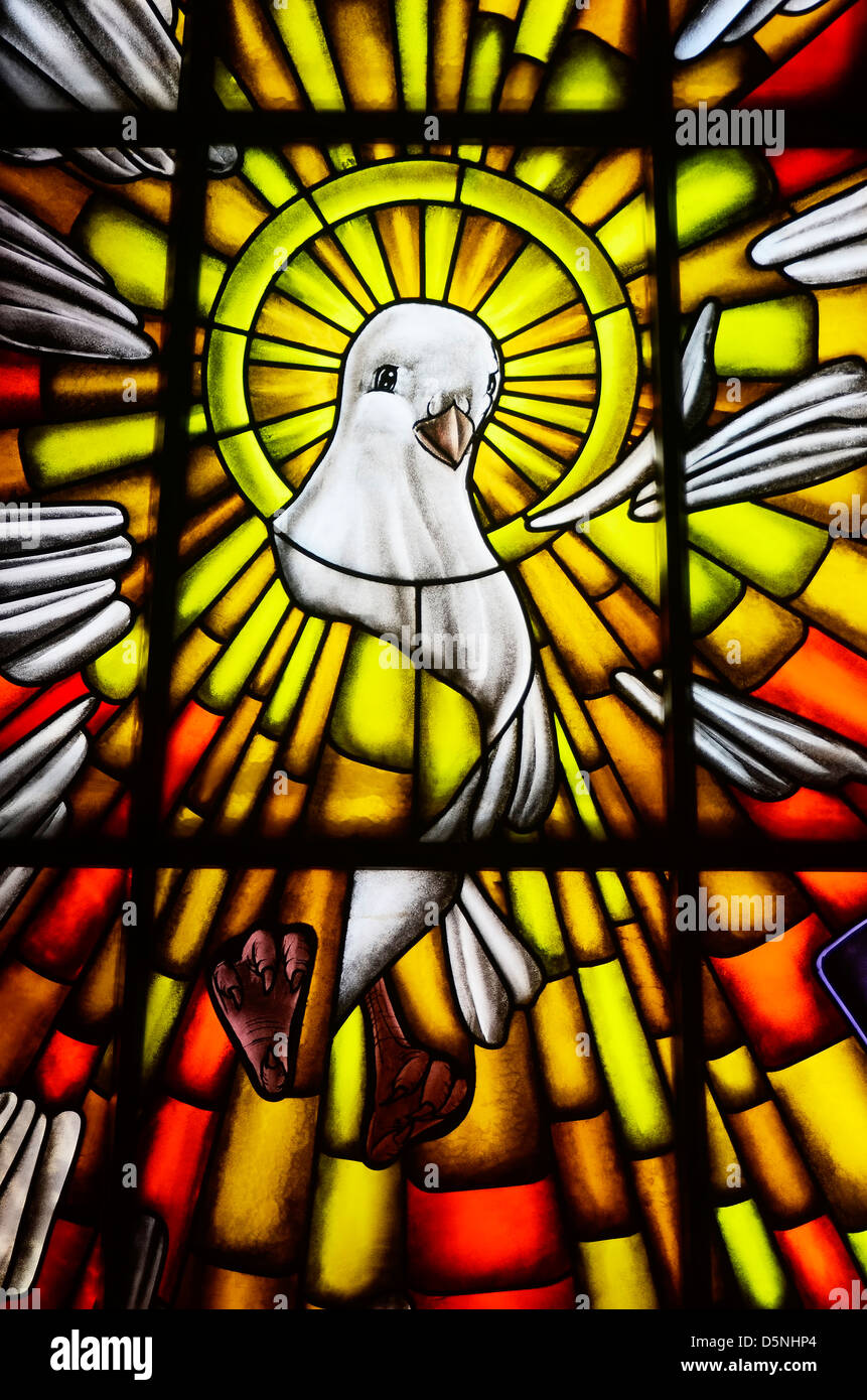 Stained glass of white dove in a catholic church the symbol of stained glass of white dove in a catholic church the symbol of the holy spirit of god biocorpaavc