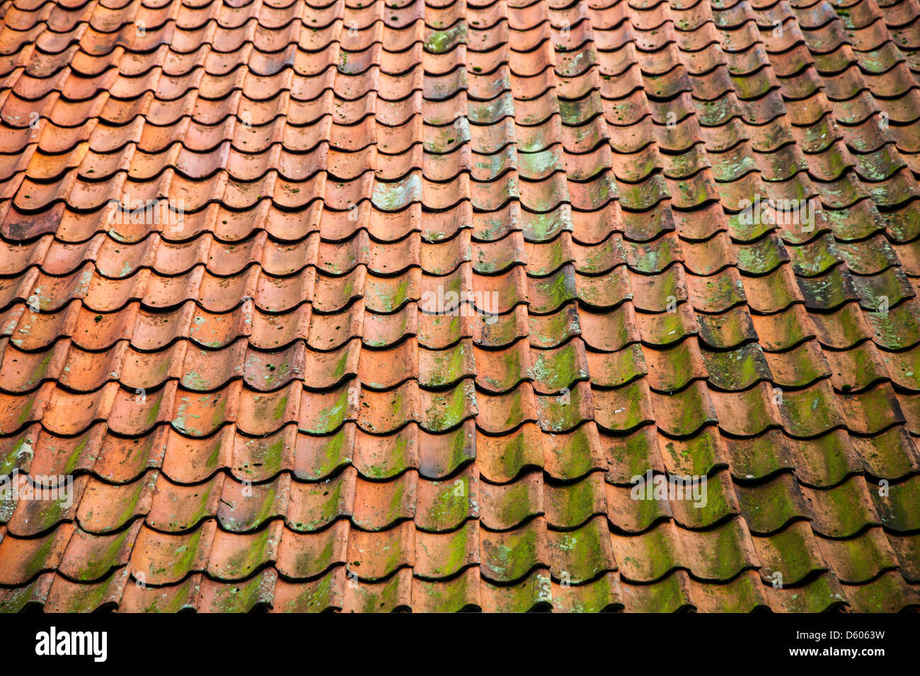 Pitched Roof Clay Roof Tiles Red Sometimes Slightly
