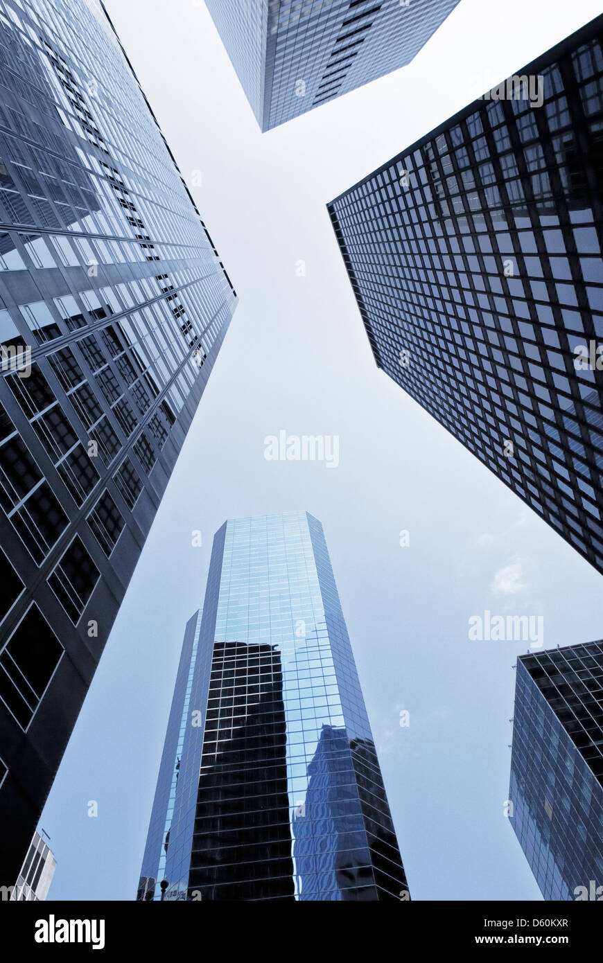 Super low angle photography 9