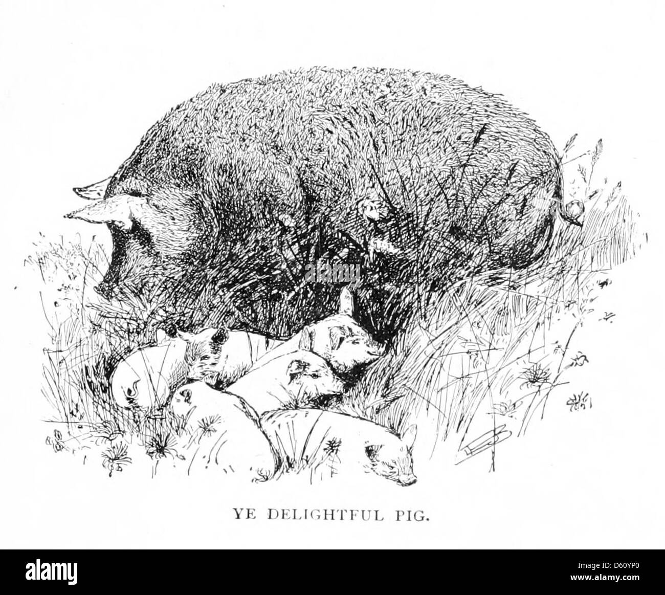 a dissertation upon roast pig theme