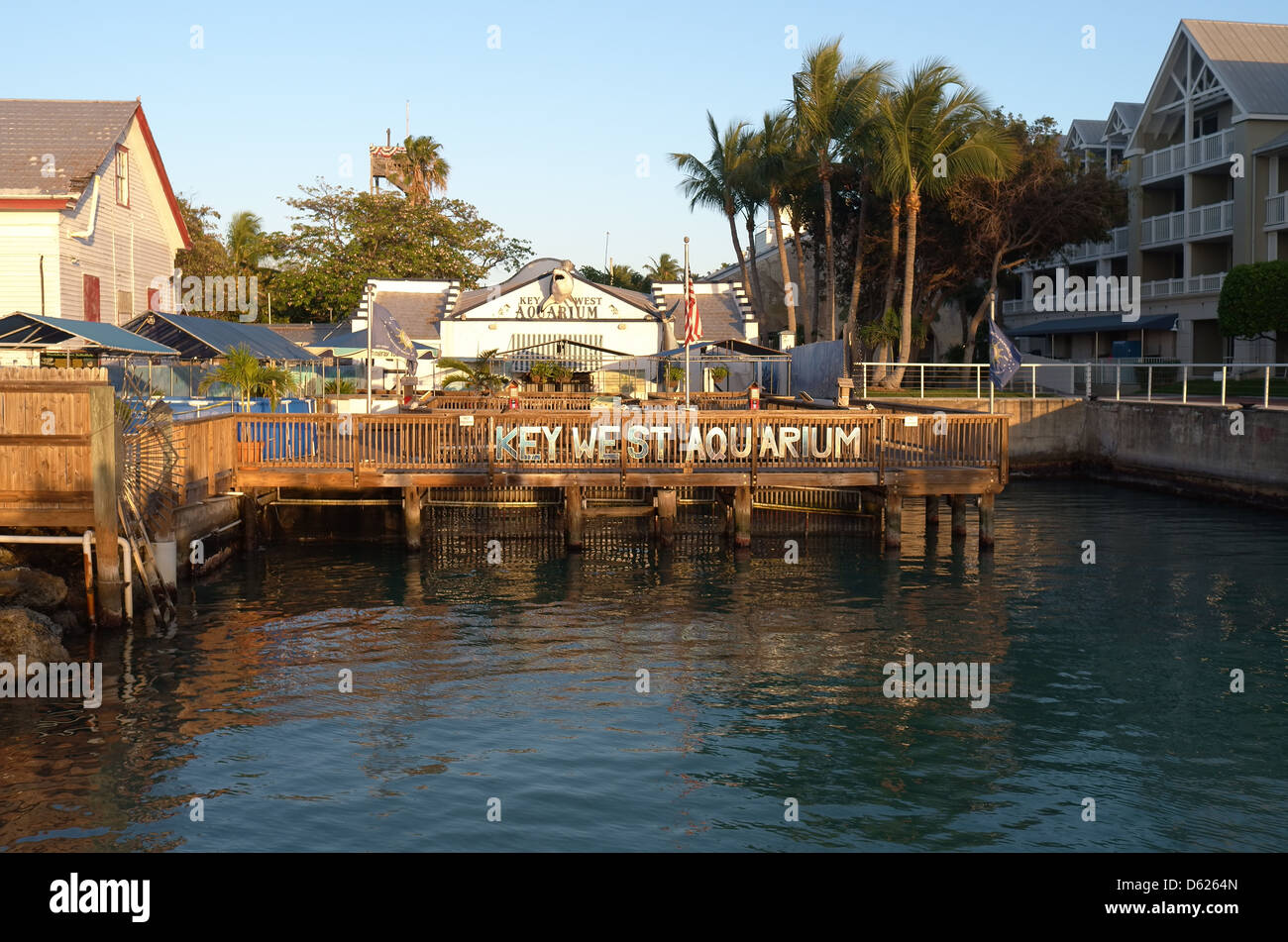 Key West Florida Aquarium Stock Photo Royalty Free Image 55367781 Alamy