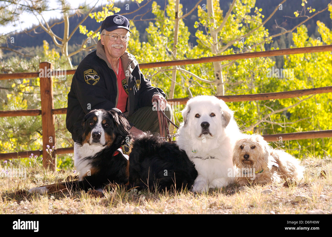 Trained Emotional Support Dog Colorado