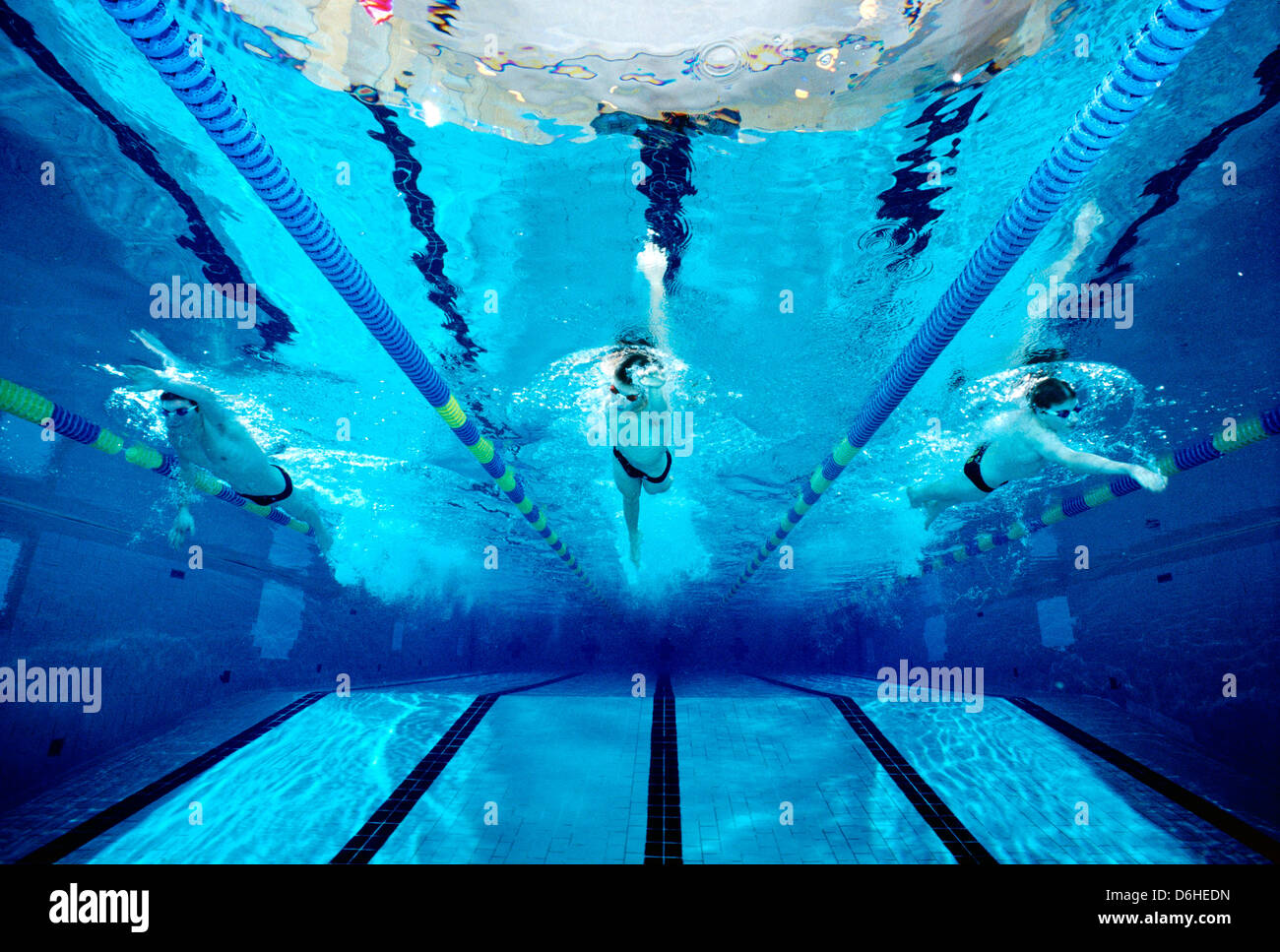 underwater photograph of a boys high school swim team practicing in an olympic size swimming pool - Olympic Swimming Pool Underwater