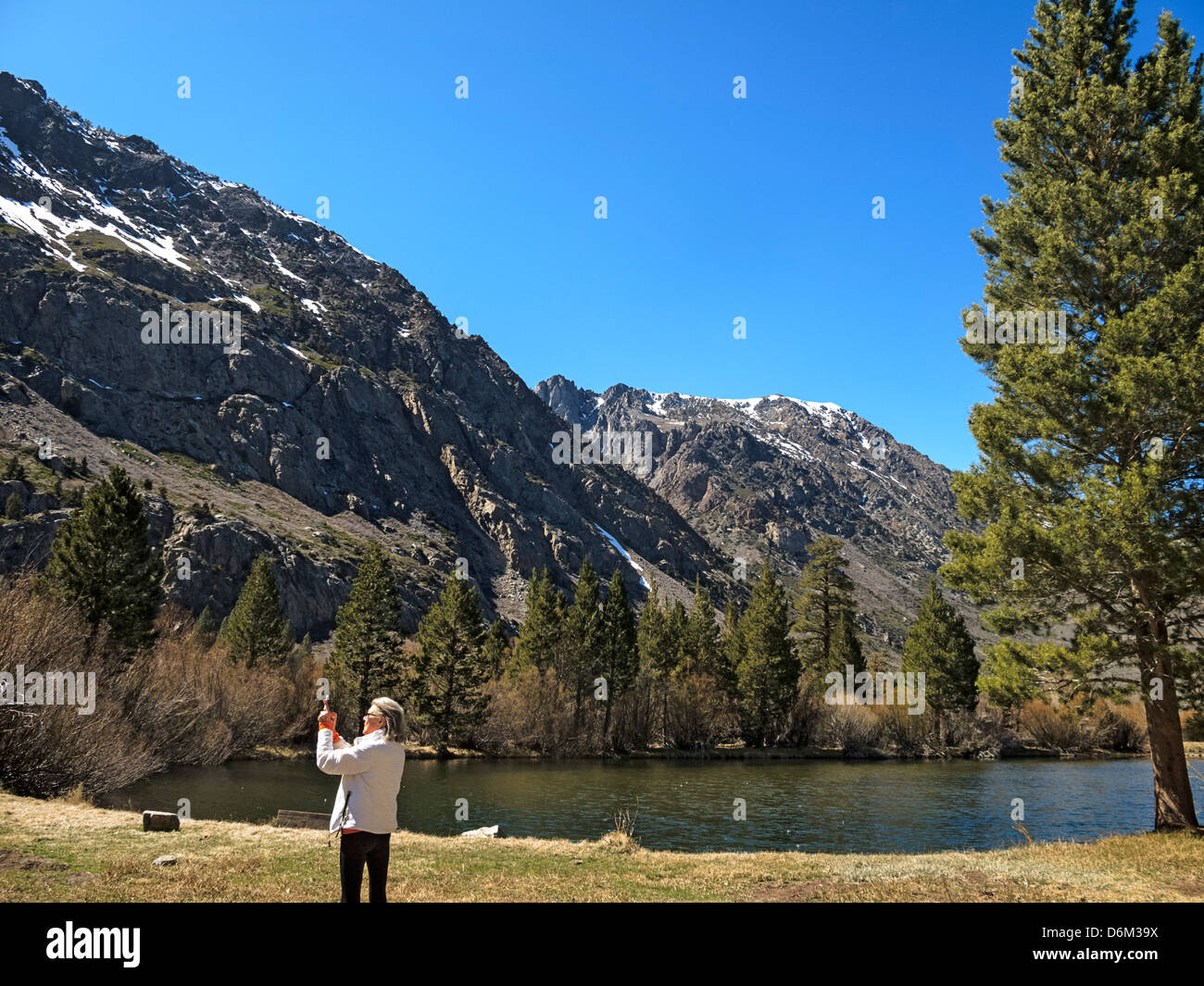 june lake black personals The town of june lake offers the convenience of shopping and dining, while the   many species of wildlife call the mountains home, such as black bear,.
