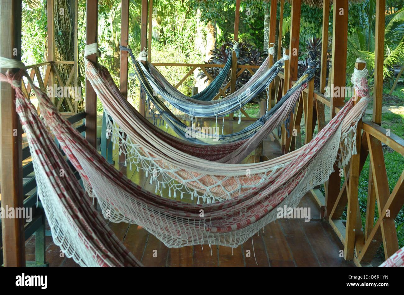 hammocks at a jungle lodge in the amazon rainforest hammocks at a jungle lodge in the amazon rainforest stock photo      rh   alamy