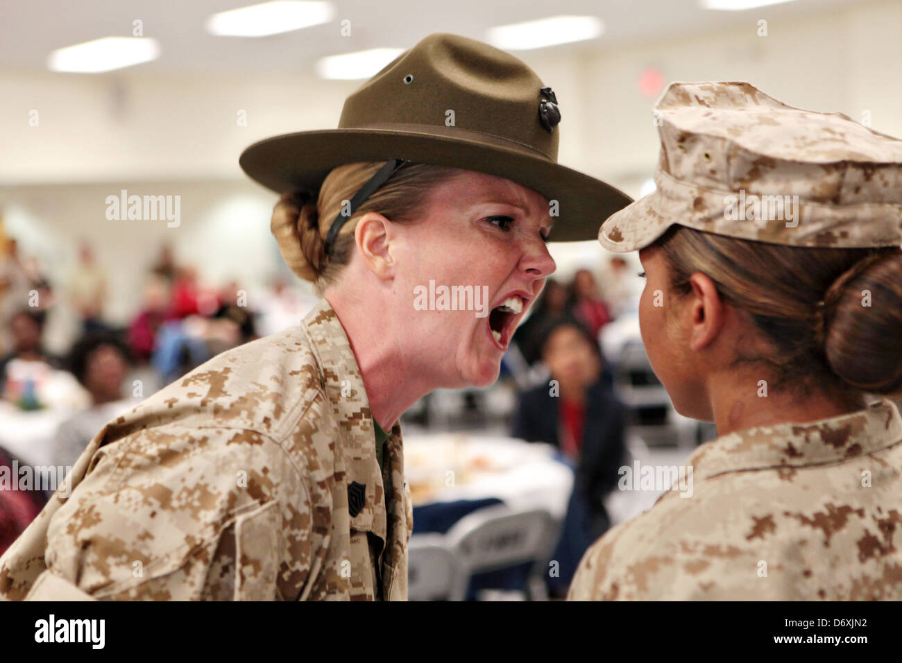 A US Marine Corps drill instructor screams at a Marine recruit ...