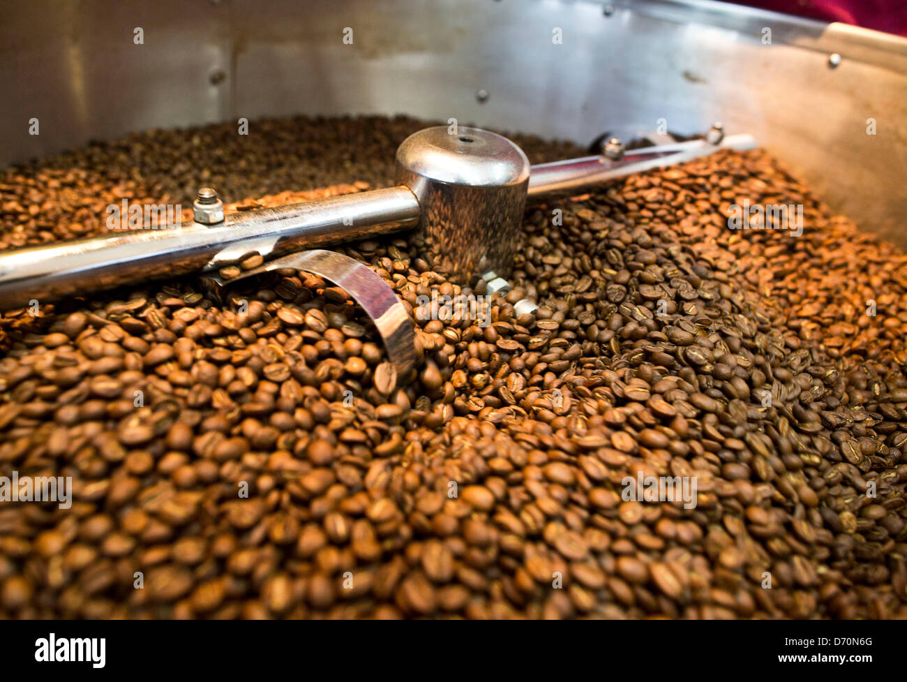 Freshly roasted coffee beans sit in a vat to cool off at the ...