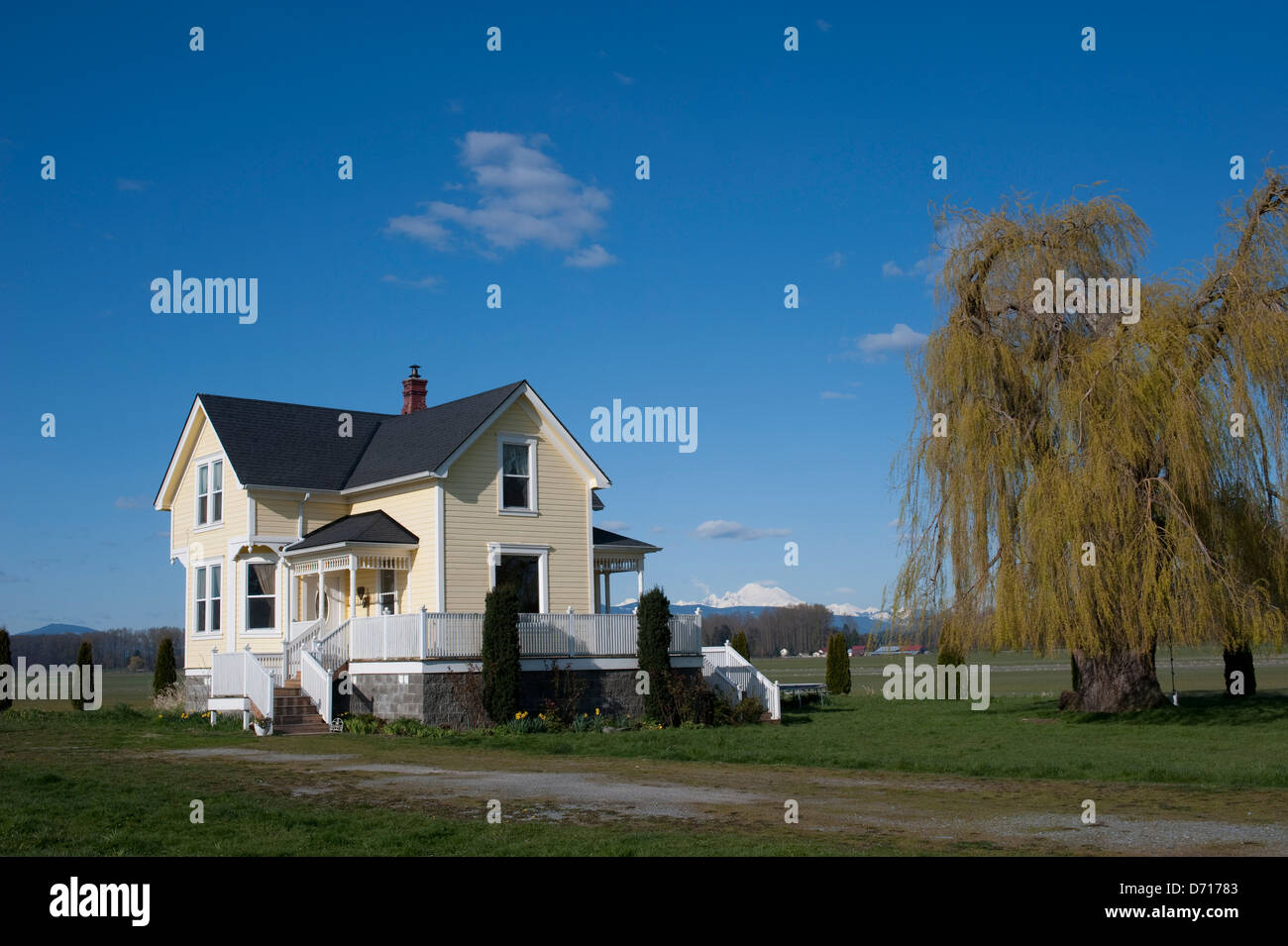Usa Washington State Skagit Valley Farm House With Mt