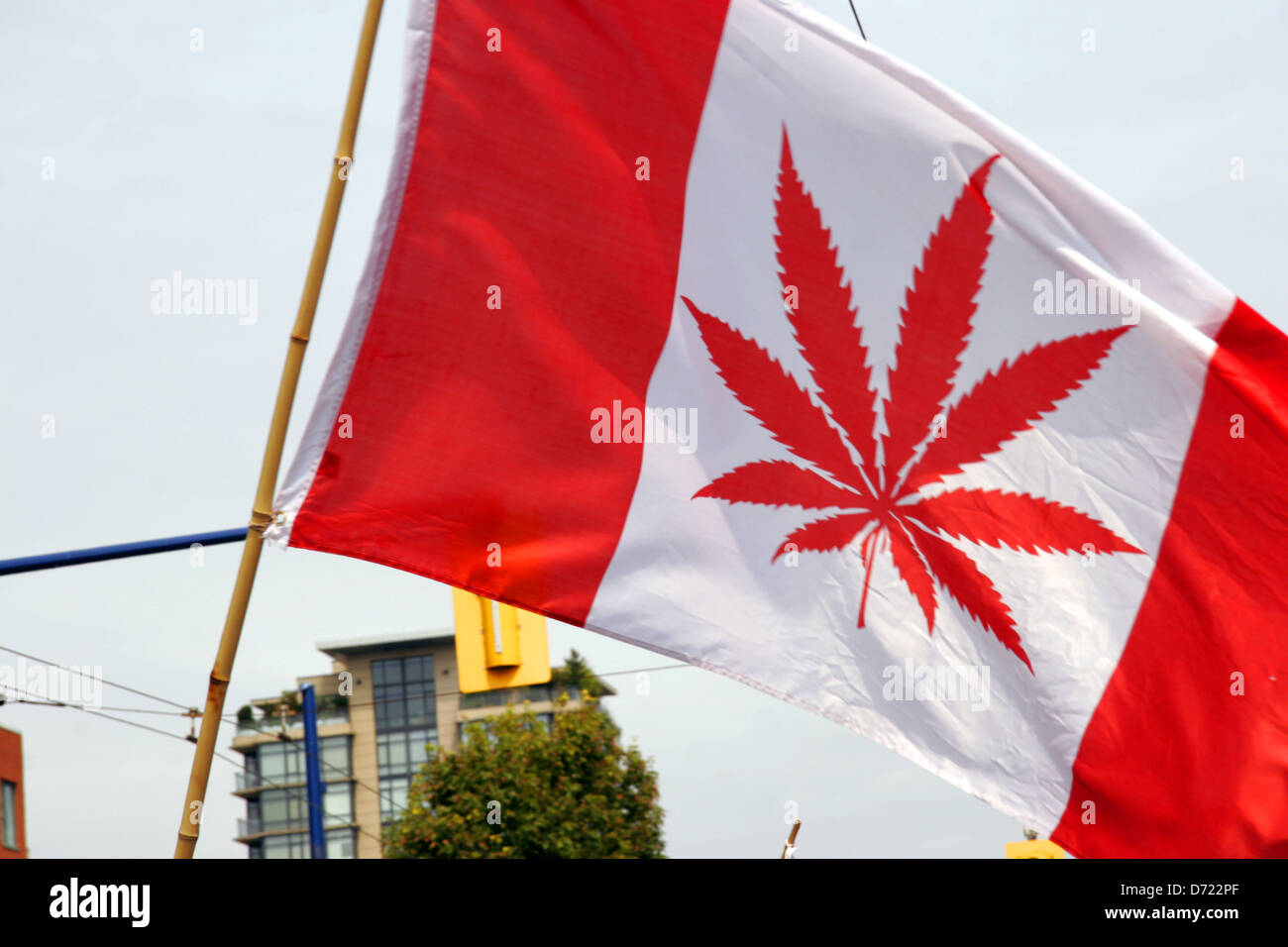canadian flag with marajuana leaf print pro legalisation of