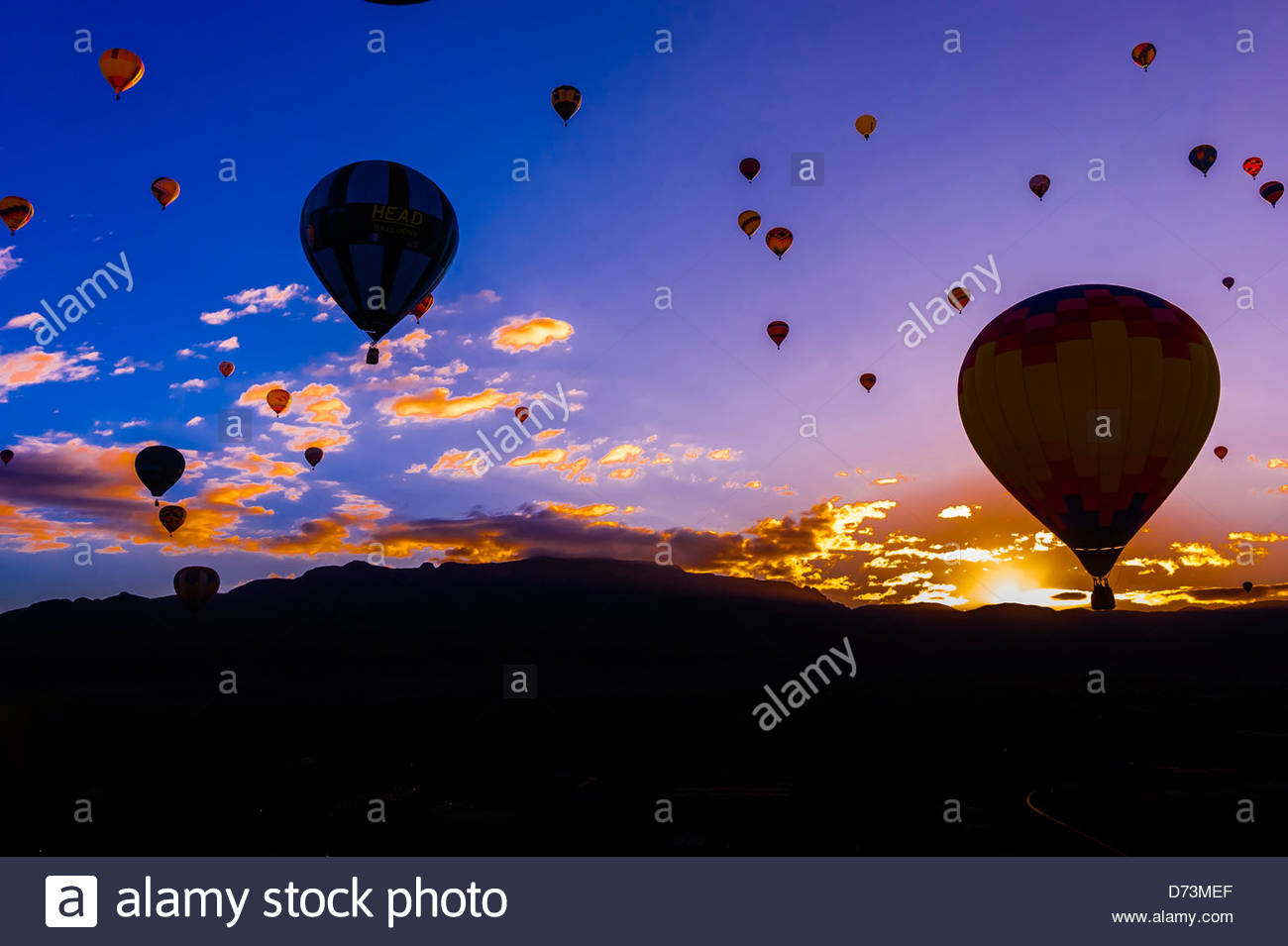 Hot air balloons flying at sunrise with the sandia mountains in hot air balloons flying at sunrise with the sandia mountains in the background albuquerque international balloon fiesta albuquerque new mexico usa sciox Choice Image