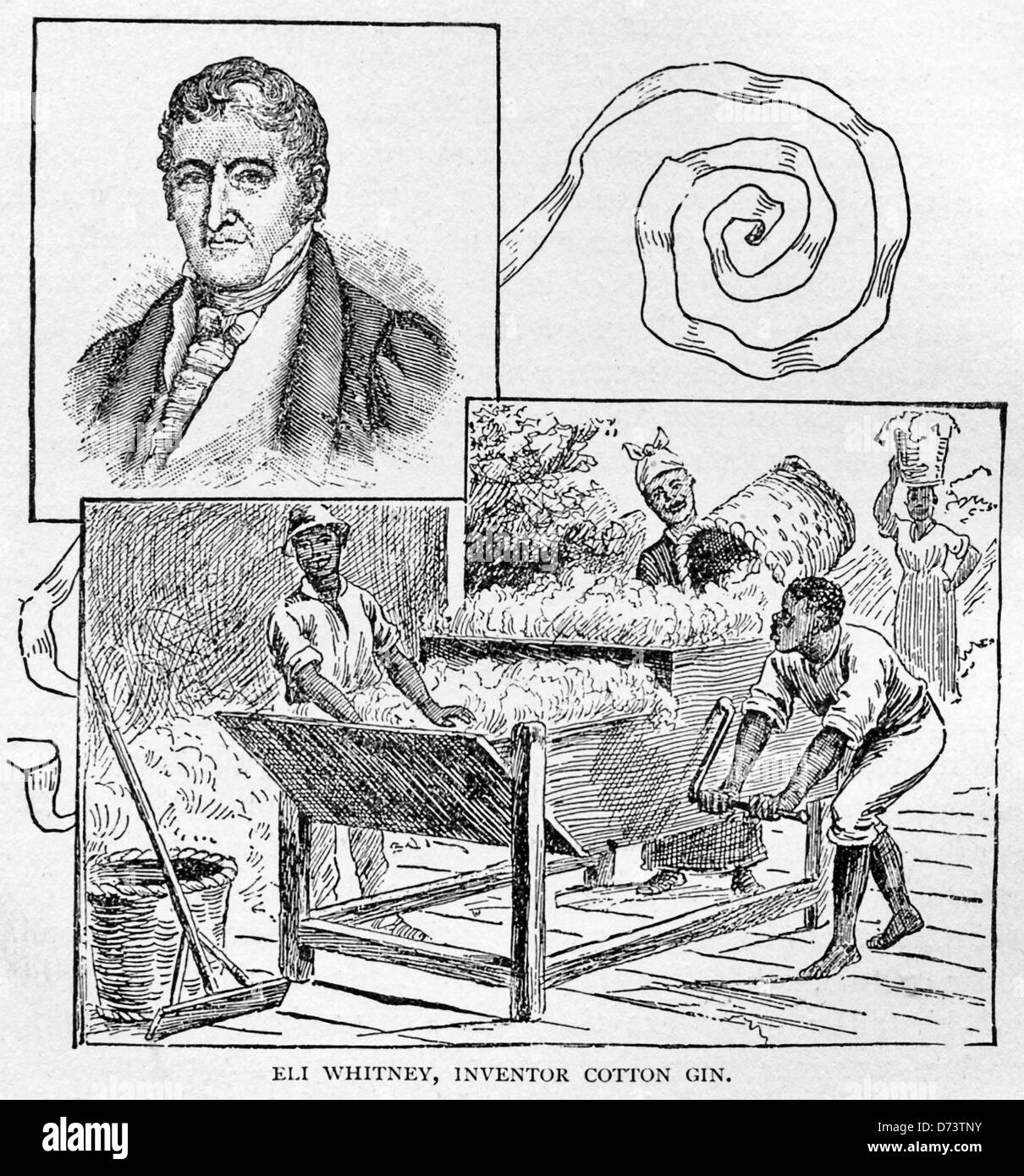 a history of eli whitneys invention of cotton gin Patent drawing for eli whitney's cotton gin the cotton gin in retrospect has a dark side to its history before its invention, cotton seeds had to be.