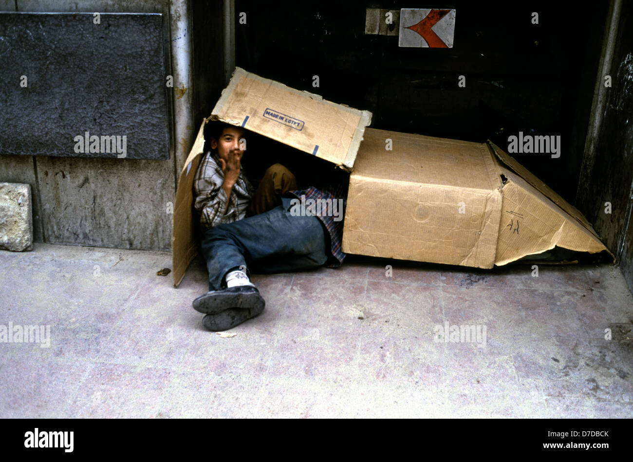 young homeless boys inside cardboard box cairo egypt stock photo 56228051 alamy. Black Bedroom Furniture Sets. Home Design Ideas
