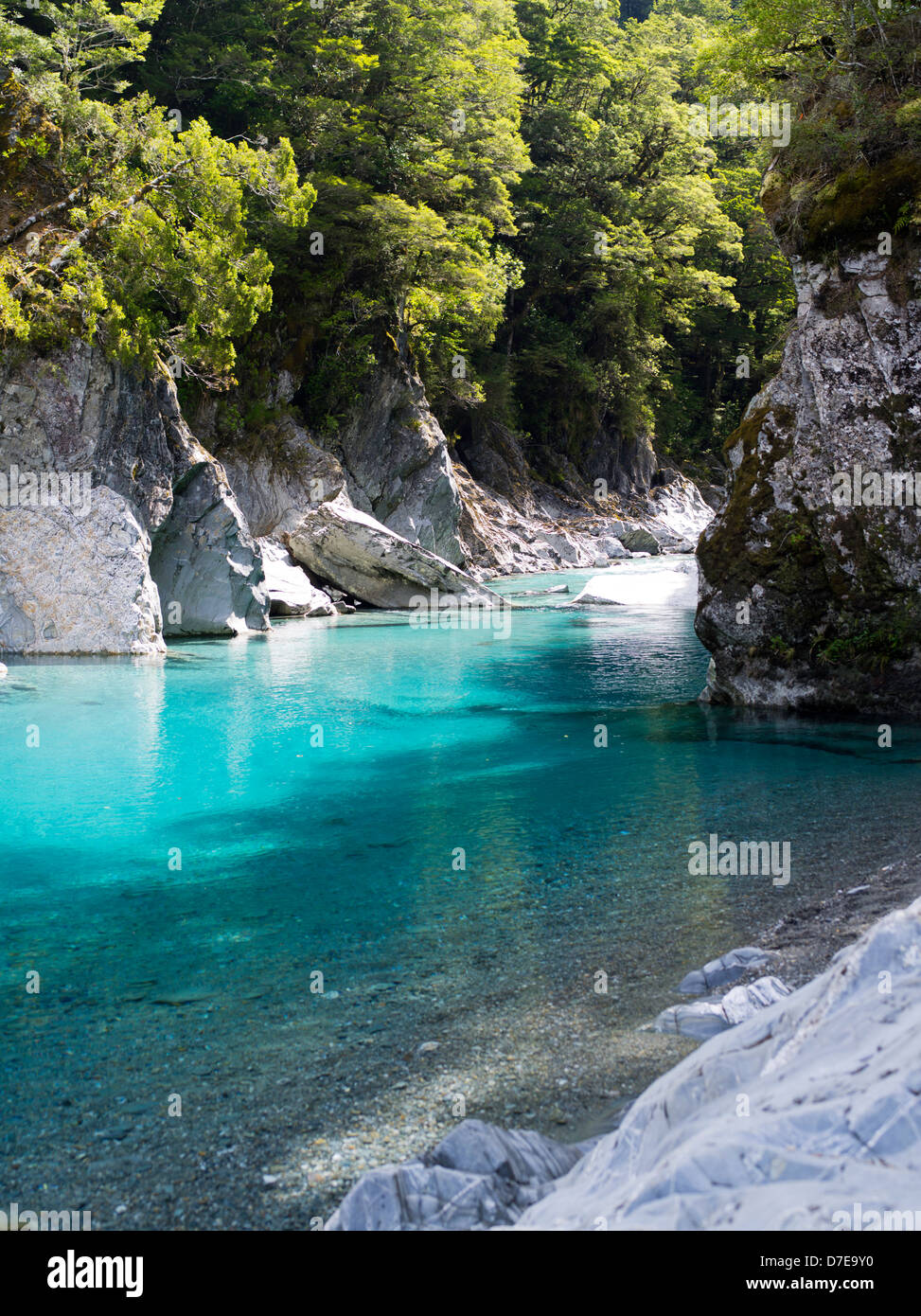 view of the blue pools and makarora river, southern alps, otago