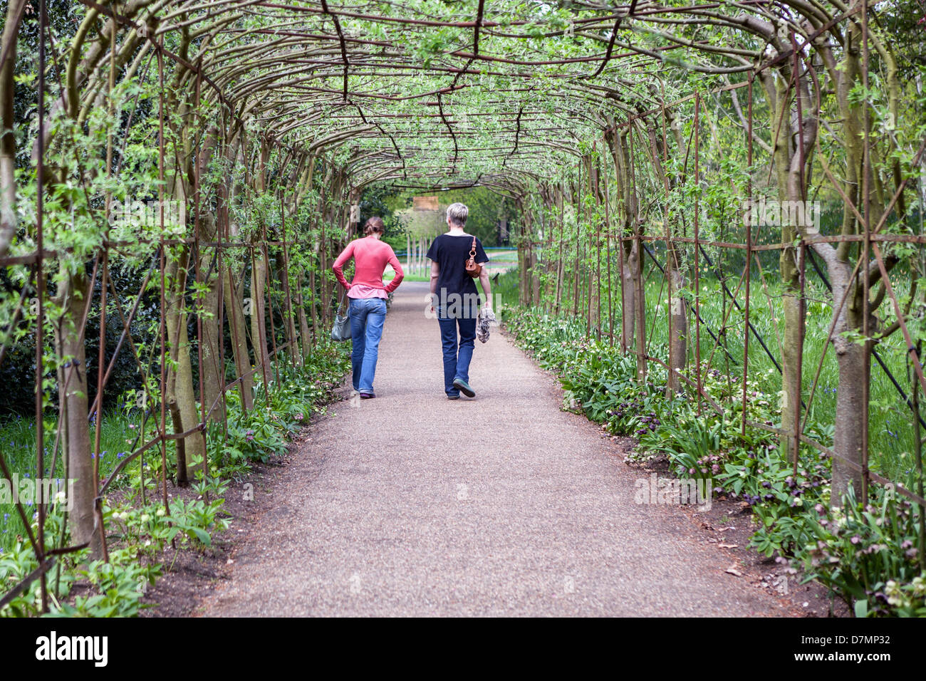 Two women walking through the john beer laburnum walk in - When you walk through the garden ...