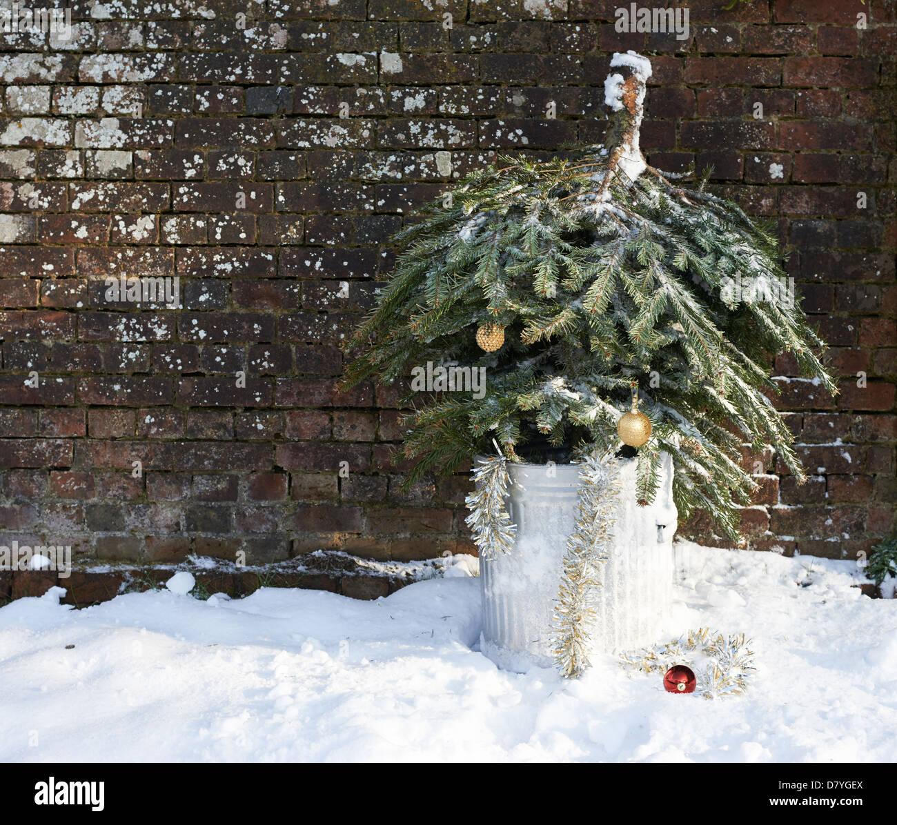 Where To Buy An Upside Down Christmas Tree