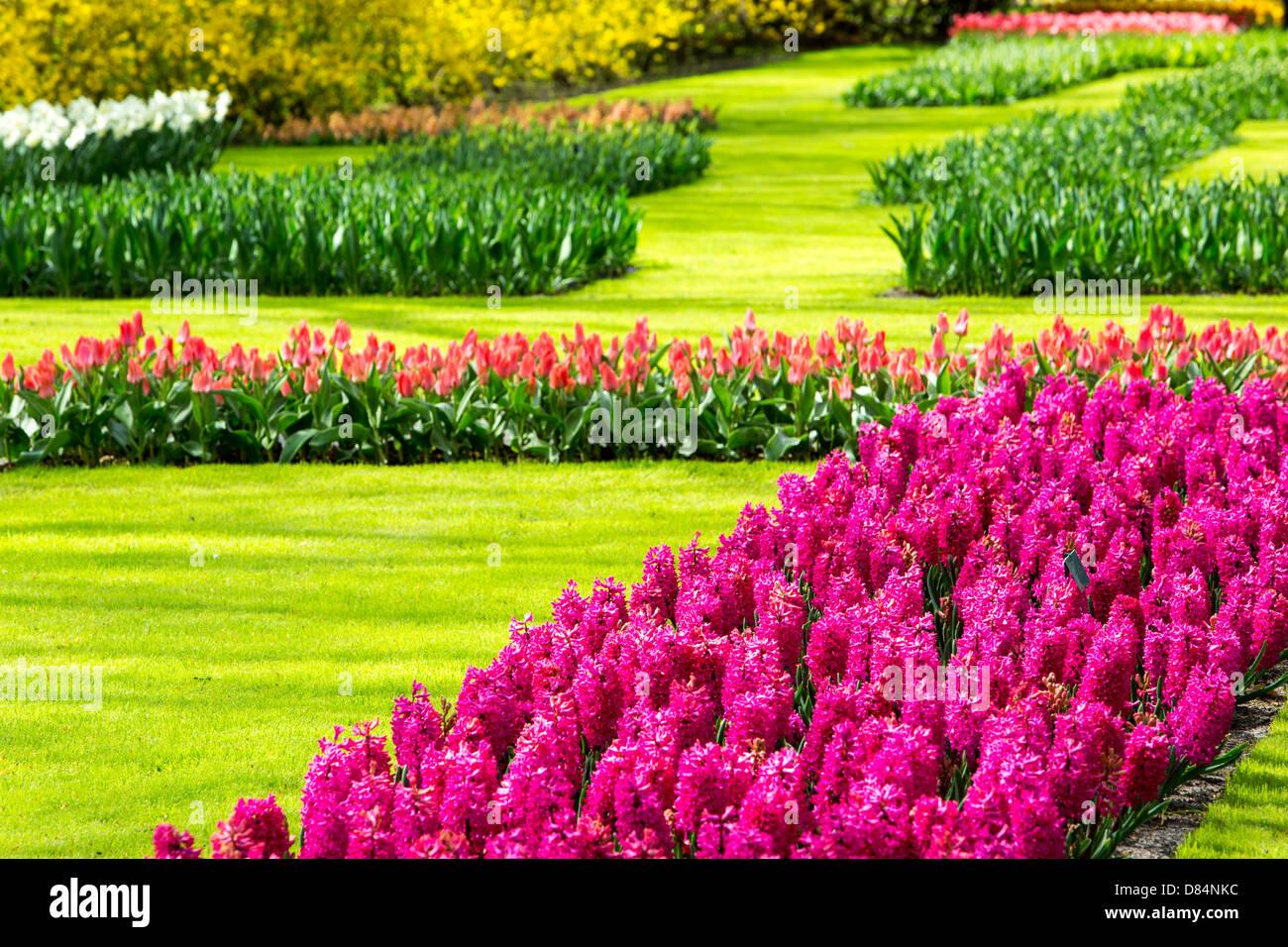 The World Famous Keukenhof Gardens Near Lisse Holland