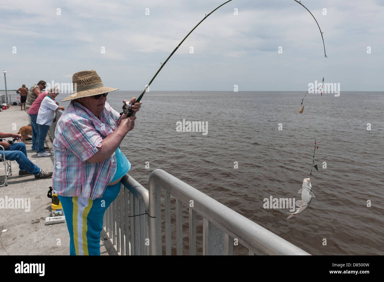 Woman reeling in a fish on the public pier at cedar key for Fishing piers in florida