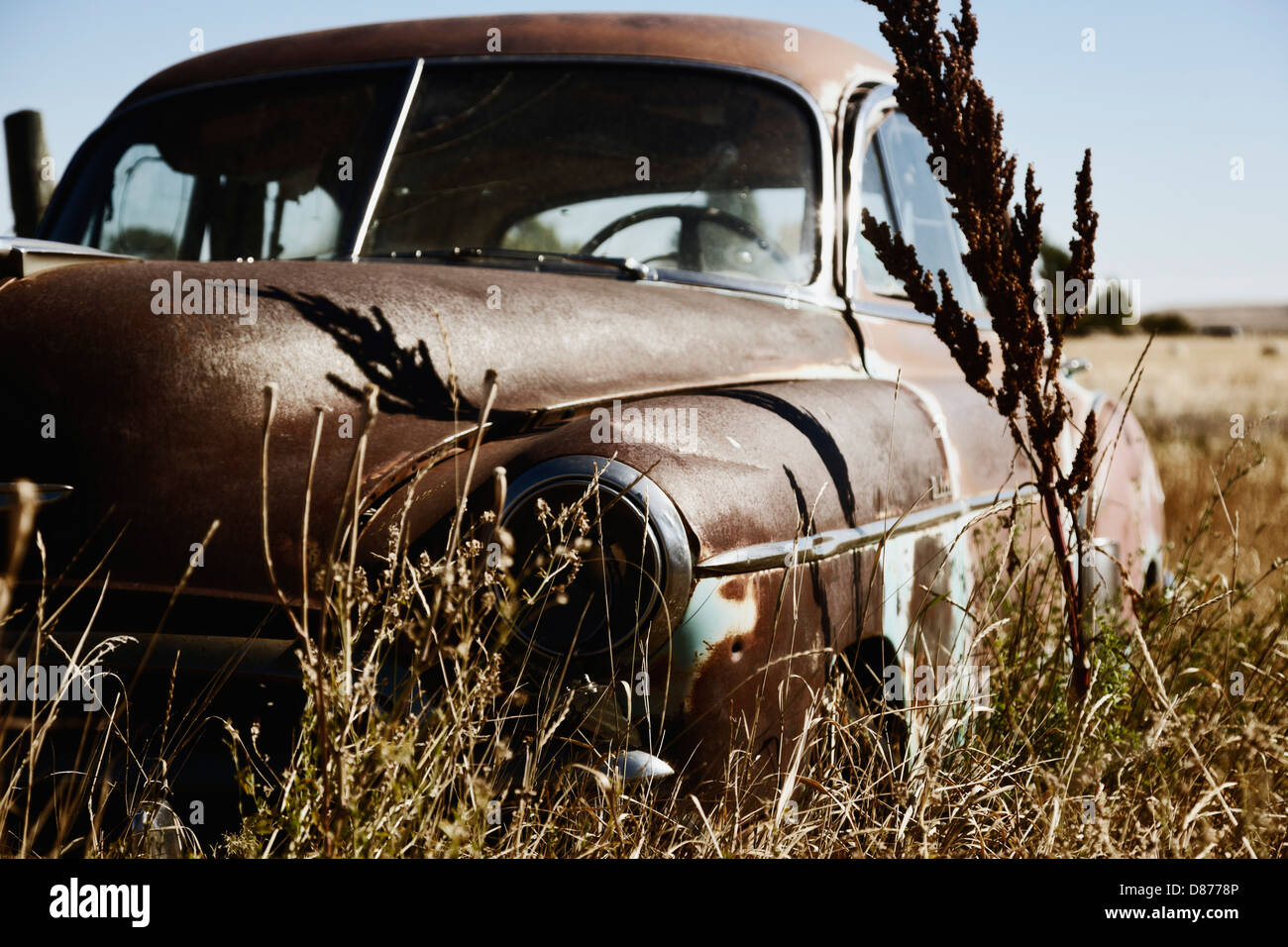 Canada, Junk yard with old US cars Stock Photo: 56707750 - Alamy