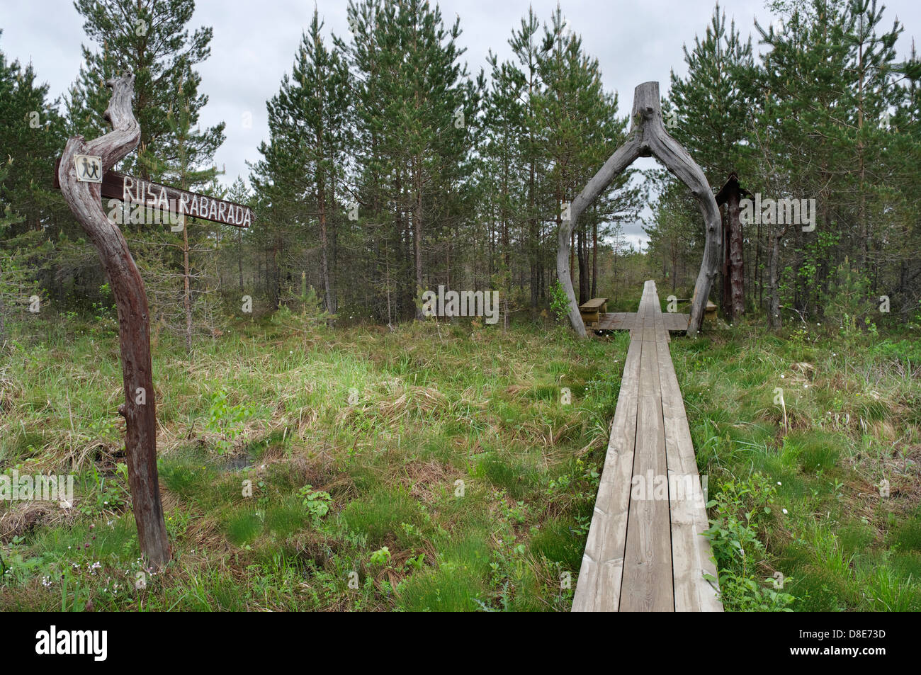 Riisa hiking trail soomaa national park in central estonia stock image