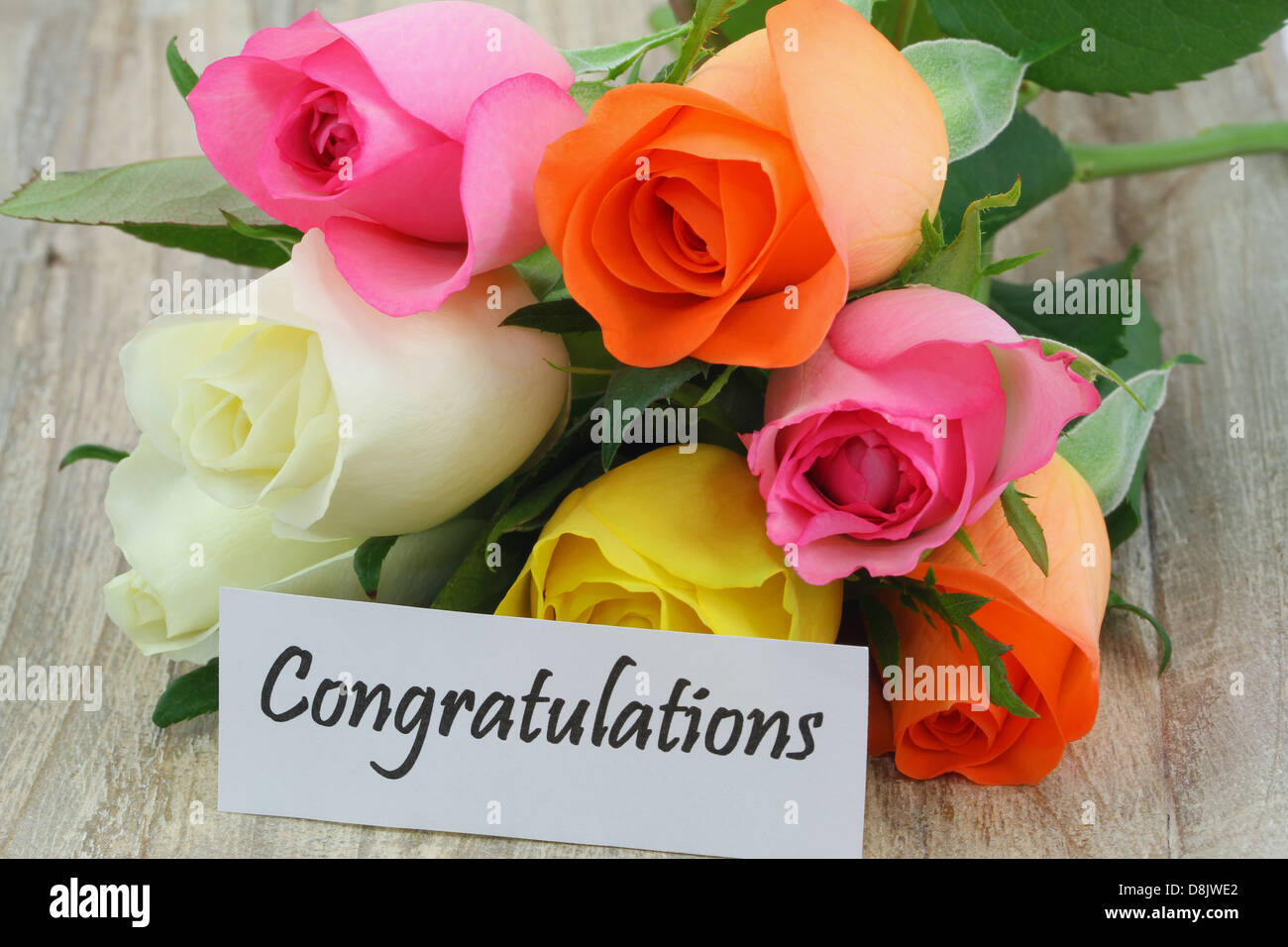 Congratulations Note With Colorful Roses Bouquet On Wooden