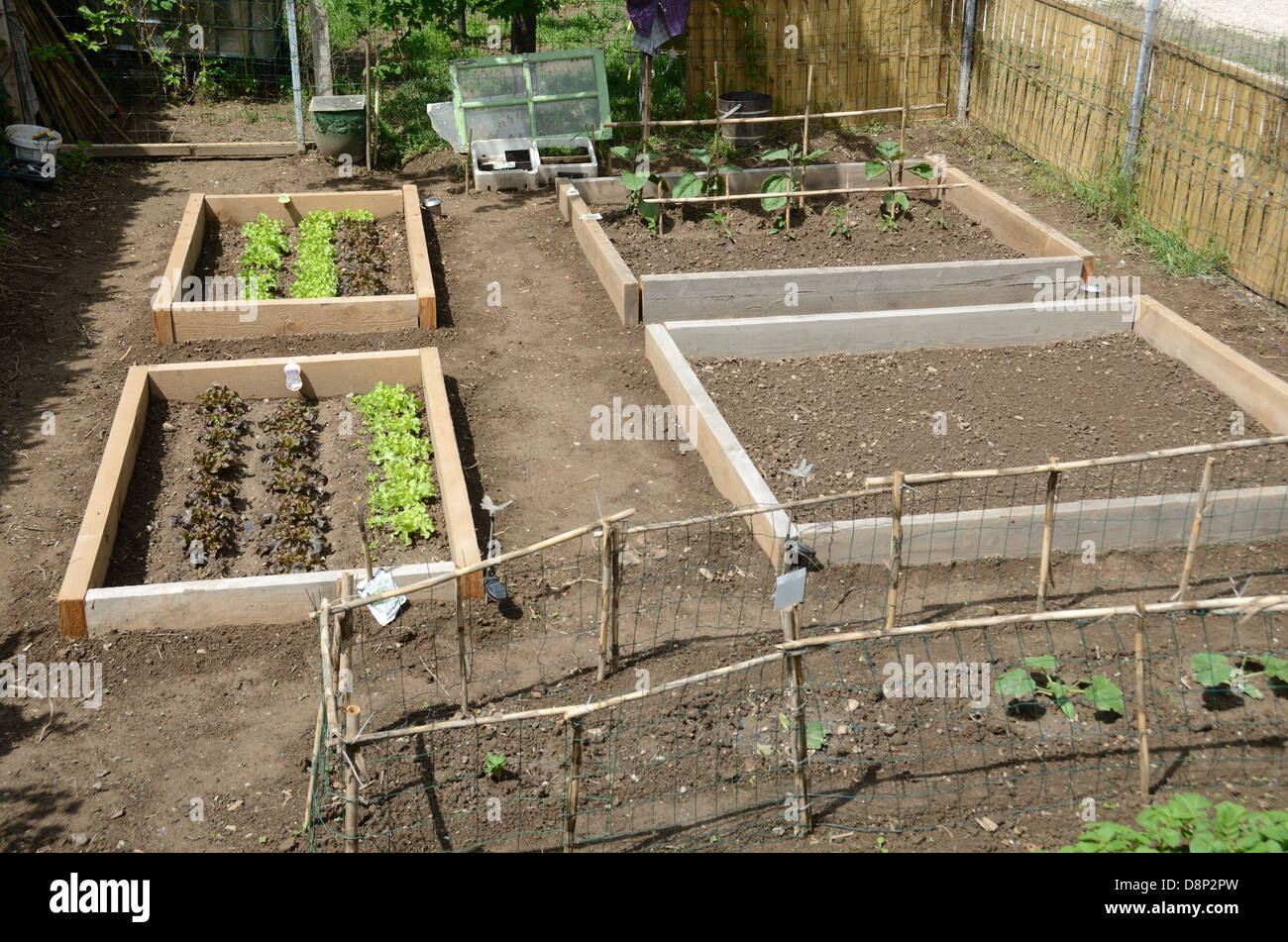 beds garden vegetable stock photos u0026 beds garden vegetable stock