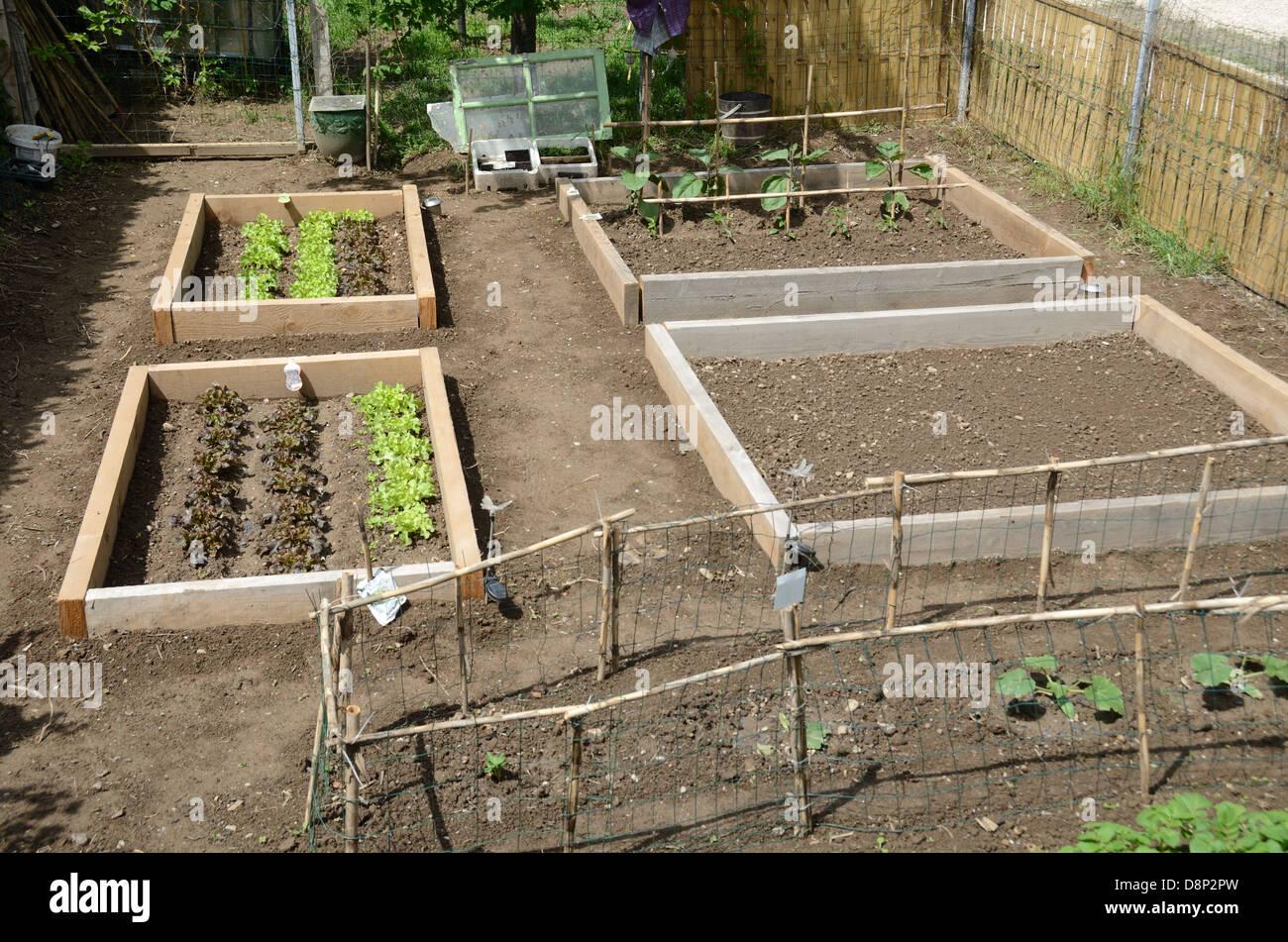 beds garden vegetable stock photos u0026 beds garden vegetable stock