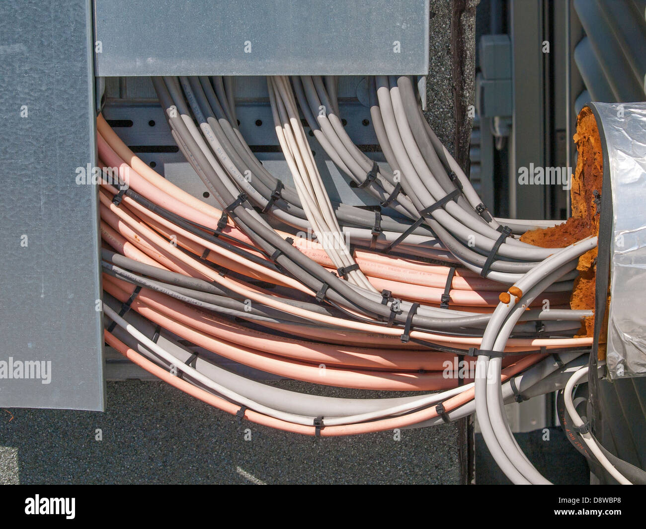 Electrical Wire Bundle : A bundle of electrical cables stock photo royalty free