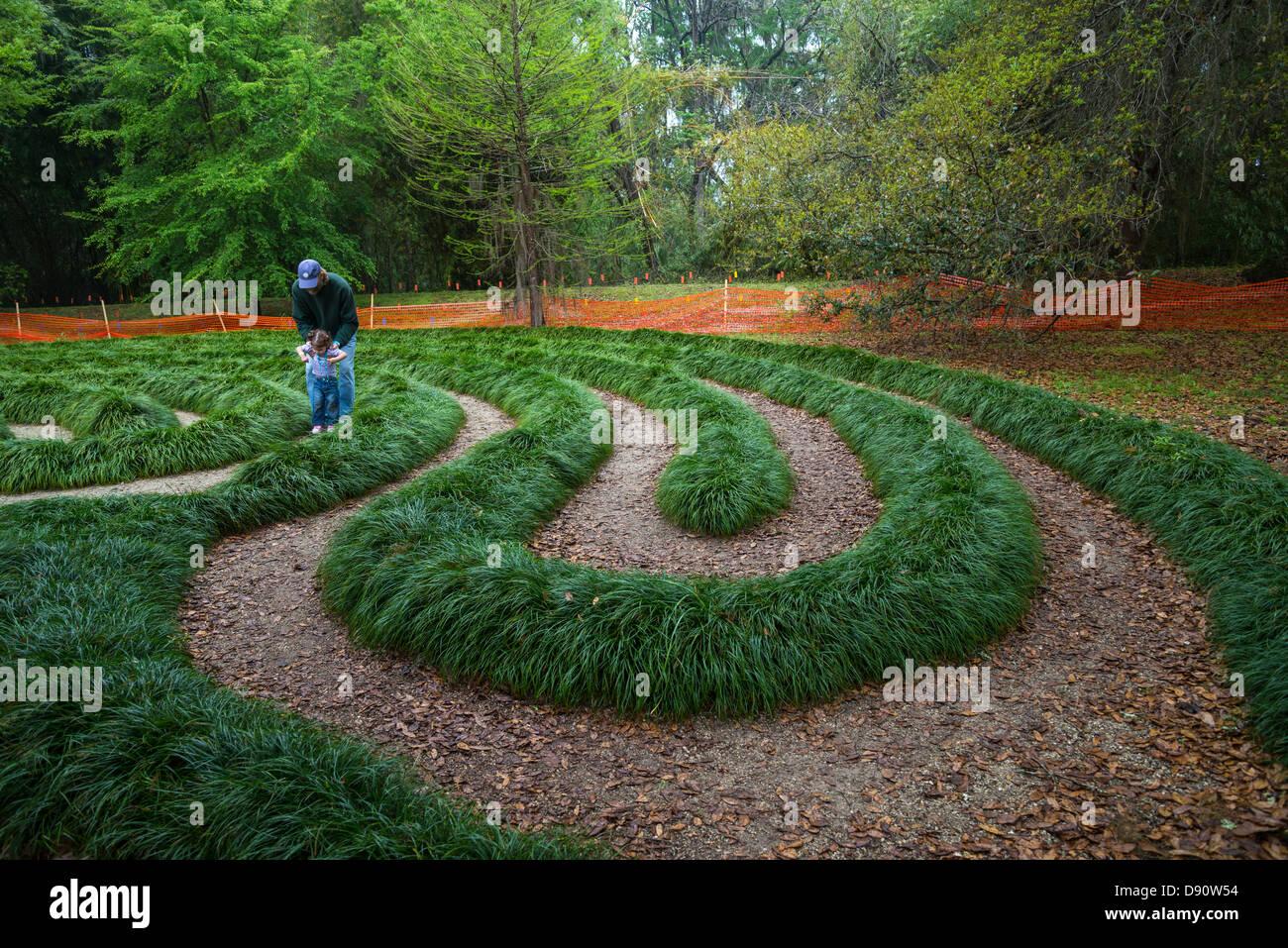 Walking Maze At Kanapaha Botanical Gardens, Gainesville, Florida