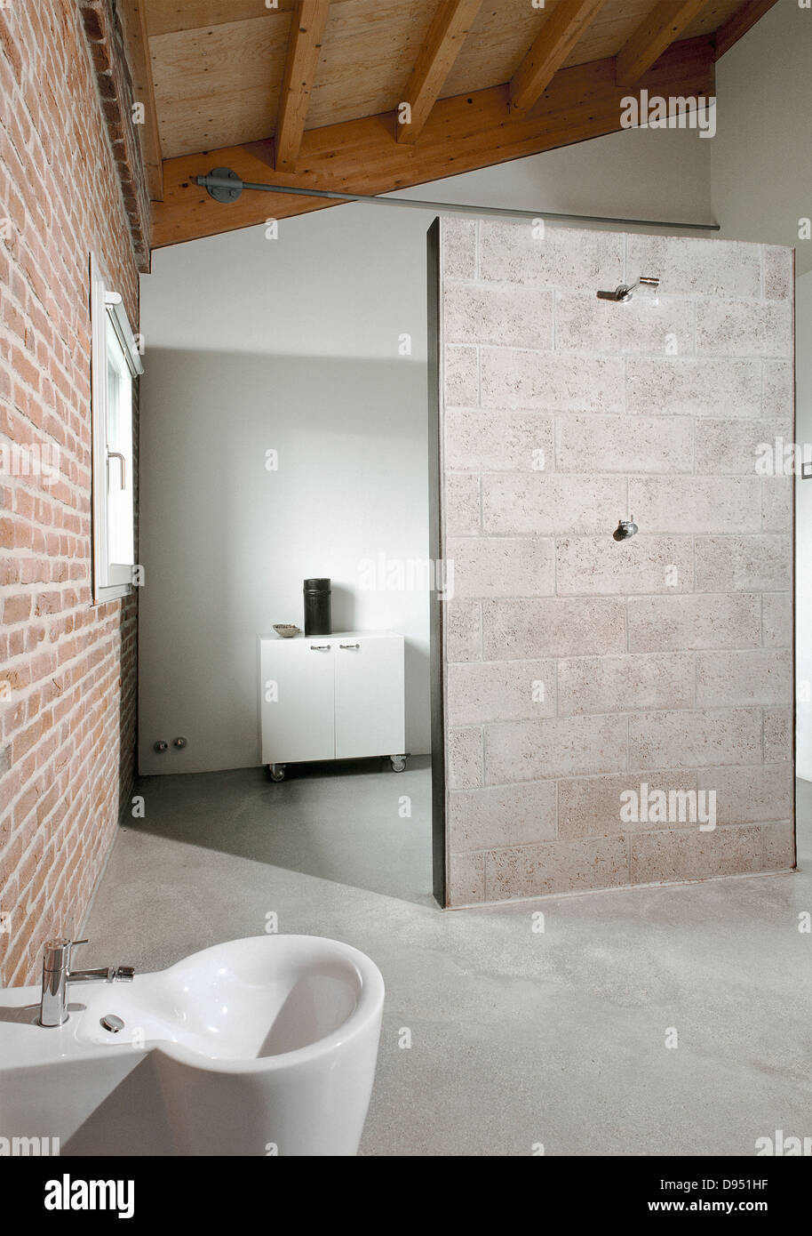 detail of shower cubicle of modern bathroom in the attic with wood