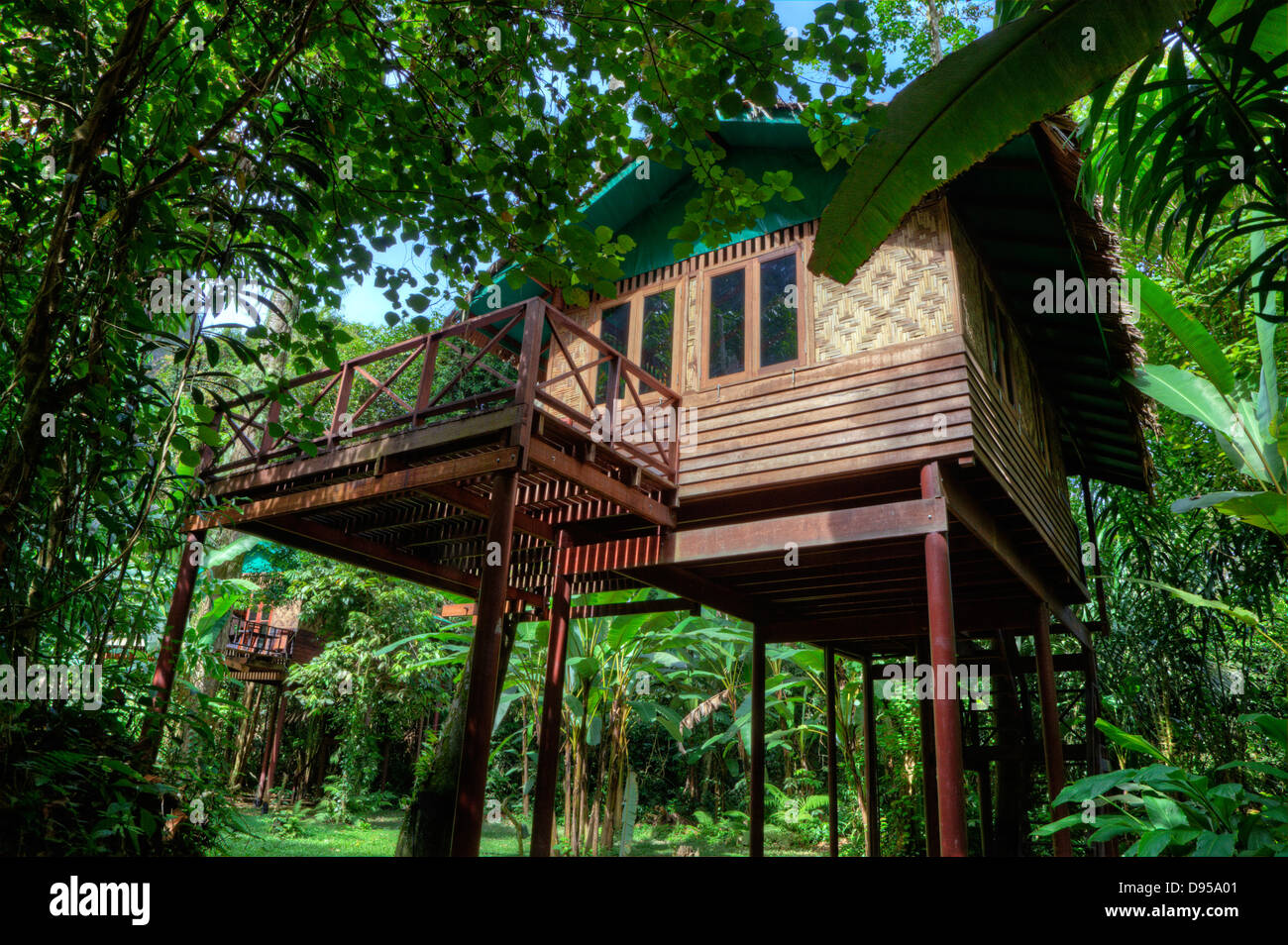 Uncategorized Houses In The Jungle tree houses are the specialty of our jungle house a lodge in rainforest near khao sok national park surathani provence th