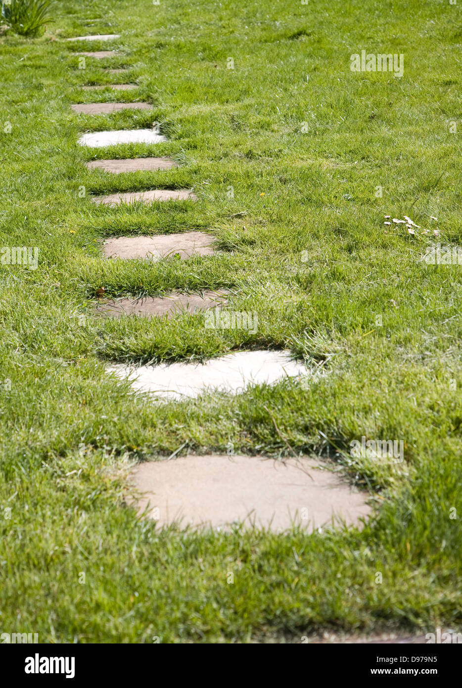 Stepping stone paving slabs form a path across grass lawn ...