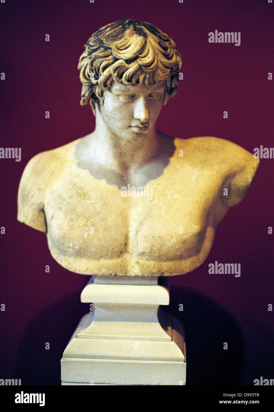Bust of Antinous From Patras, (National Archaeological ...