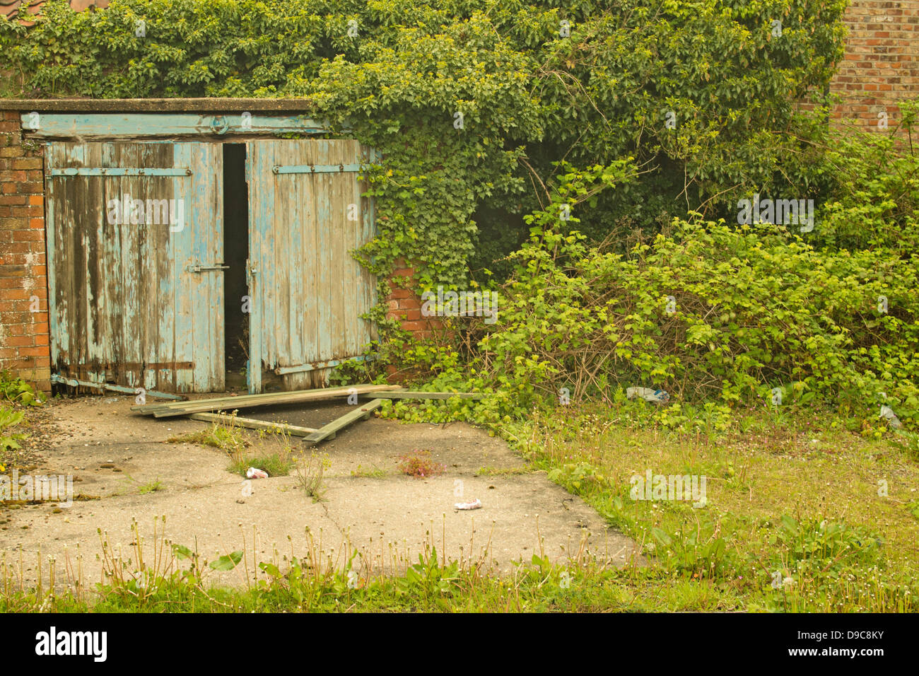 Wooden garages in nottinghamshire - Lock Up Garage Or Shed Overgrown With Bushes And Weeds Wooden Doors Starting To
