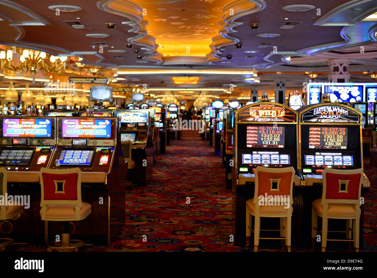 Five star casinos play for fun casino free download