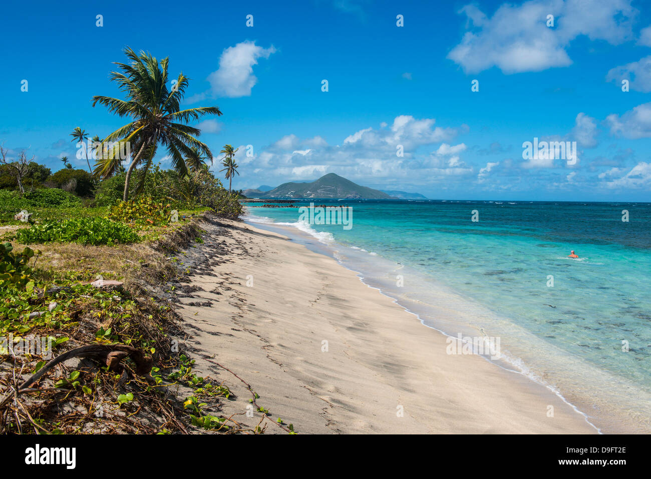 Beach at Long Haul Bay, Nevis Island, St. Kitts and Nevis ...