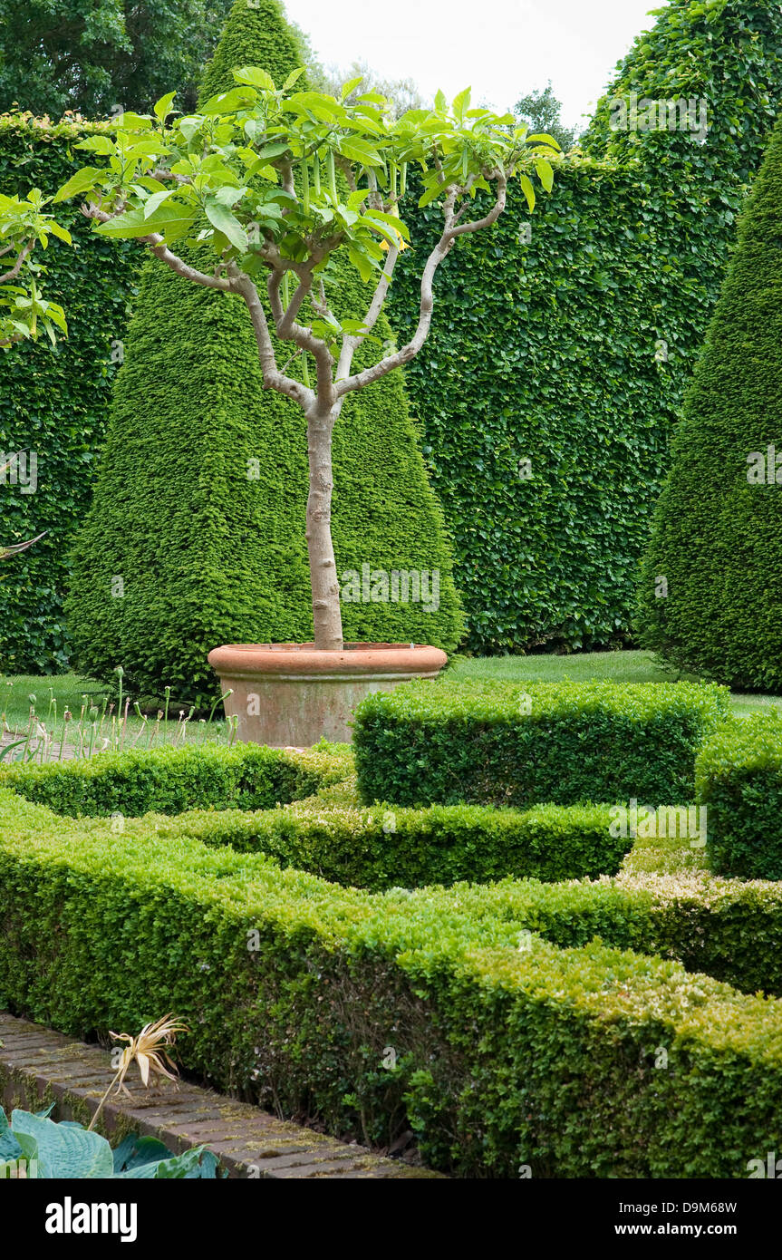 English Boxwood Garden Design, Norfolk, England