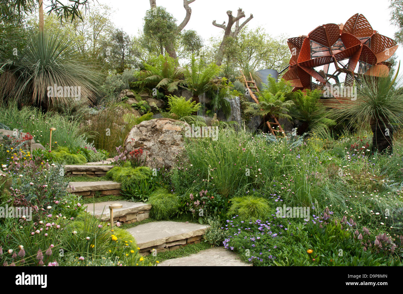 view of steps and studio in the trailfinders australian garden at rhs stock photo  royalty free