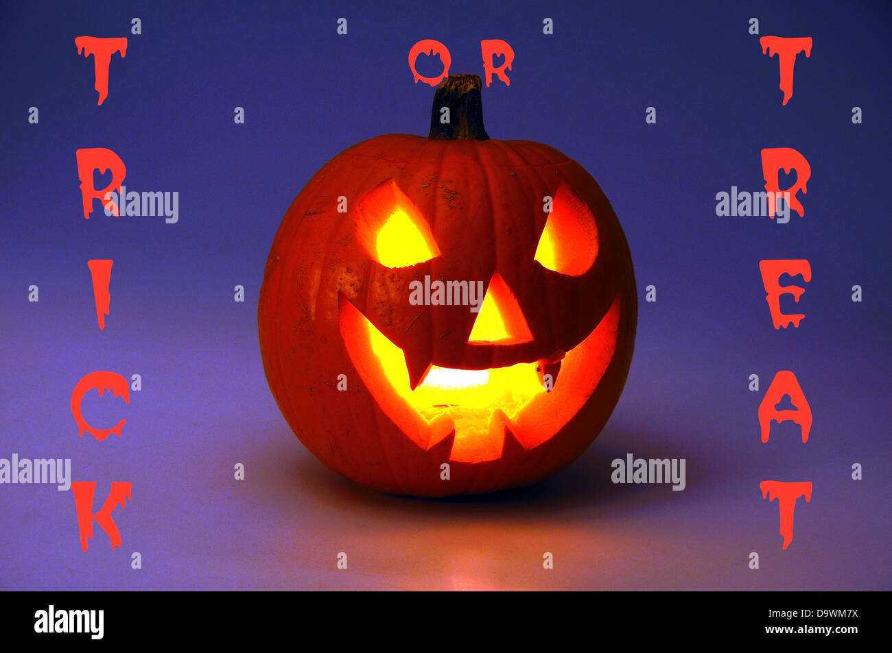 halloween scary writing stock photos halloween scary writing scary halloween pumpkin lit candlelight trick or treat writing on the background