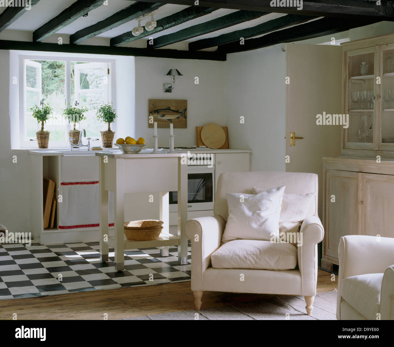 blackwhite-tiled-floor-in-white-country-cottage-kitchen-open-to-a-D9YE60