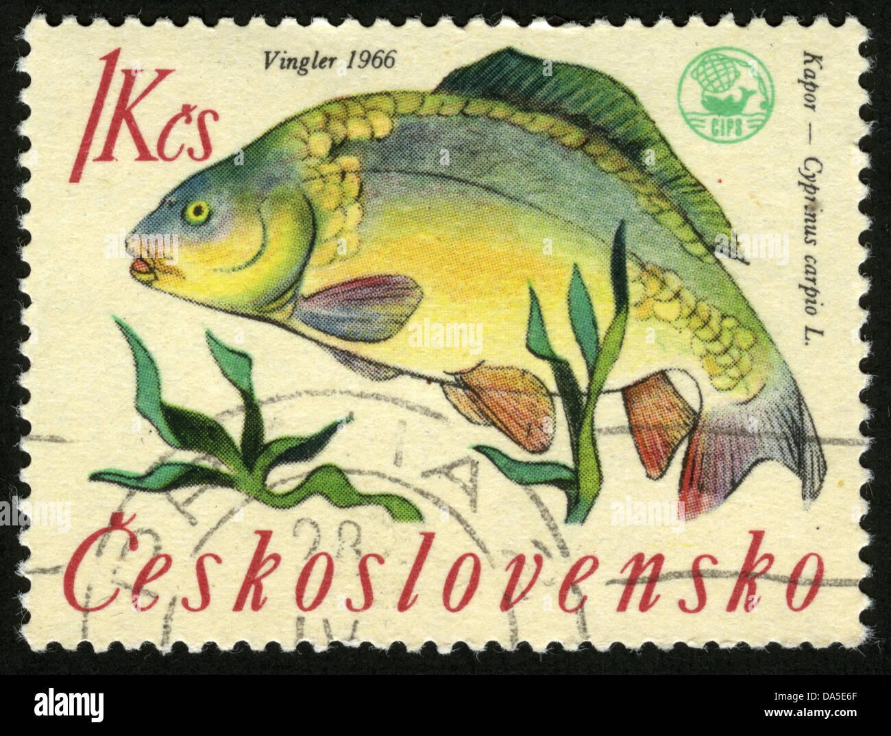 Czechoslovakia post mark stamp aquarium fish for Fish symboled stamp