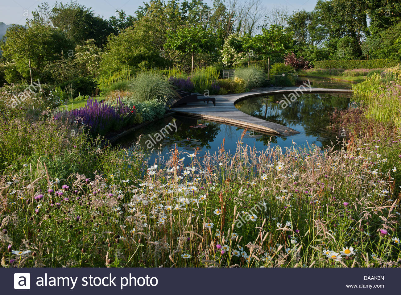 Pond informal contemporary garden designer design julie for Ornamental fish pond design