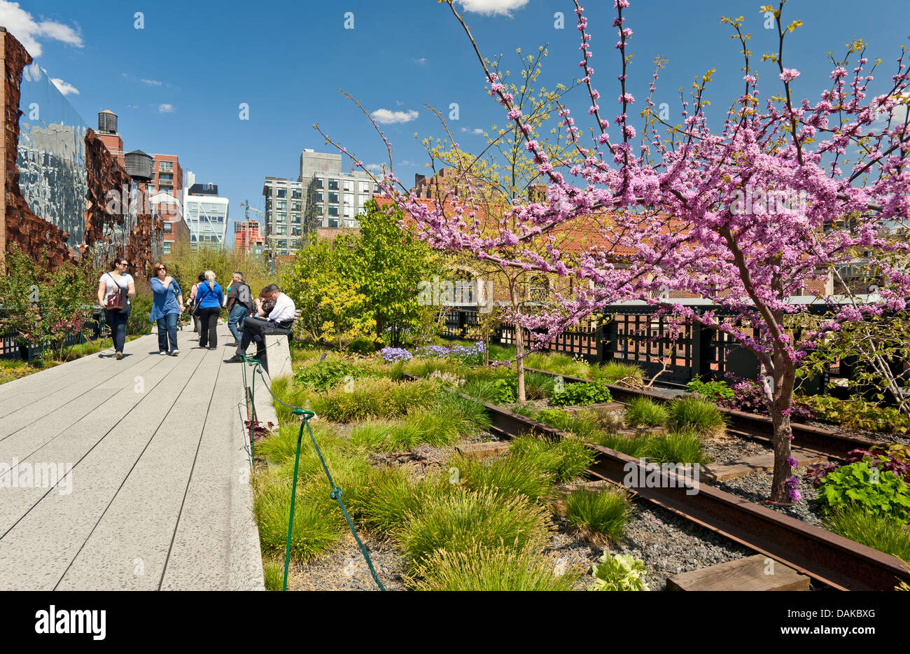 High Line New York Spring Bloom People Stock Photo, Royalty Free ...