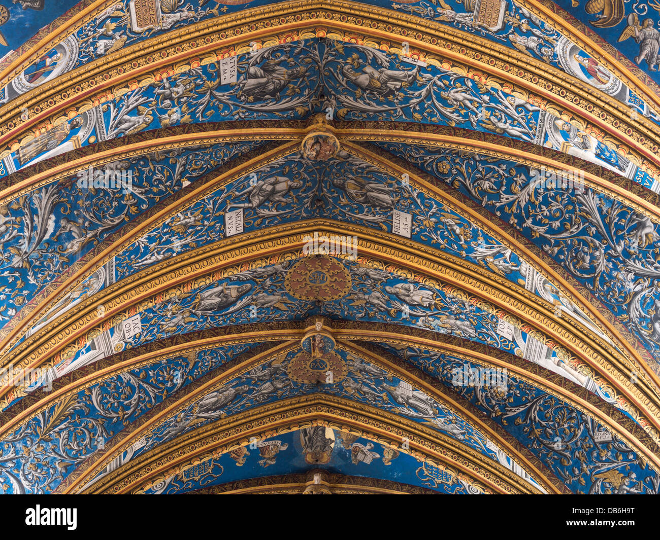 detail of st cecil cathedral ceiling the ornate decorations in blue stock photo royalty free. Black Bedroom Furniture Sets. Home Design Ideas