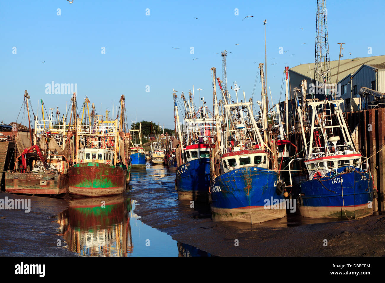 Kings lynn port and fishing fleet norfolk england uk for Fishing kings free