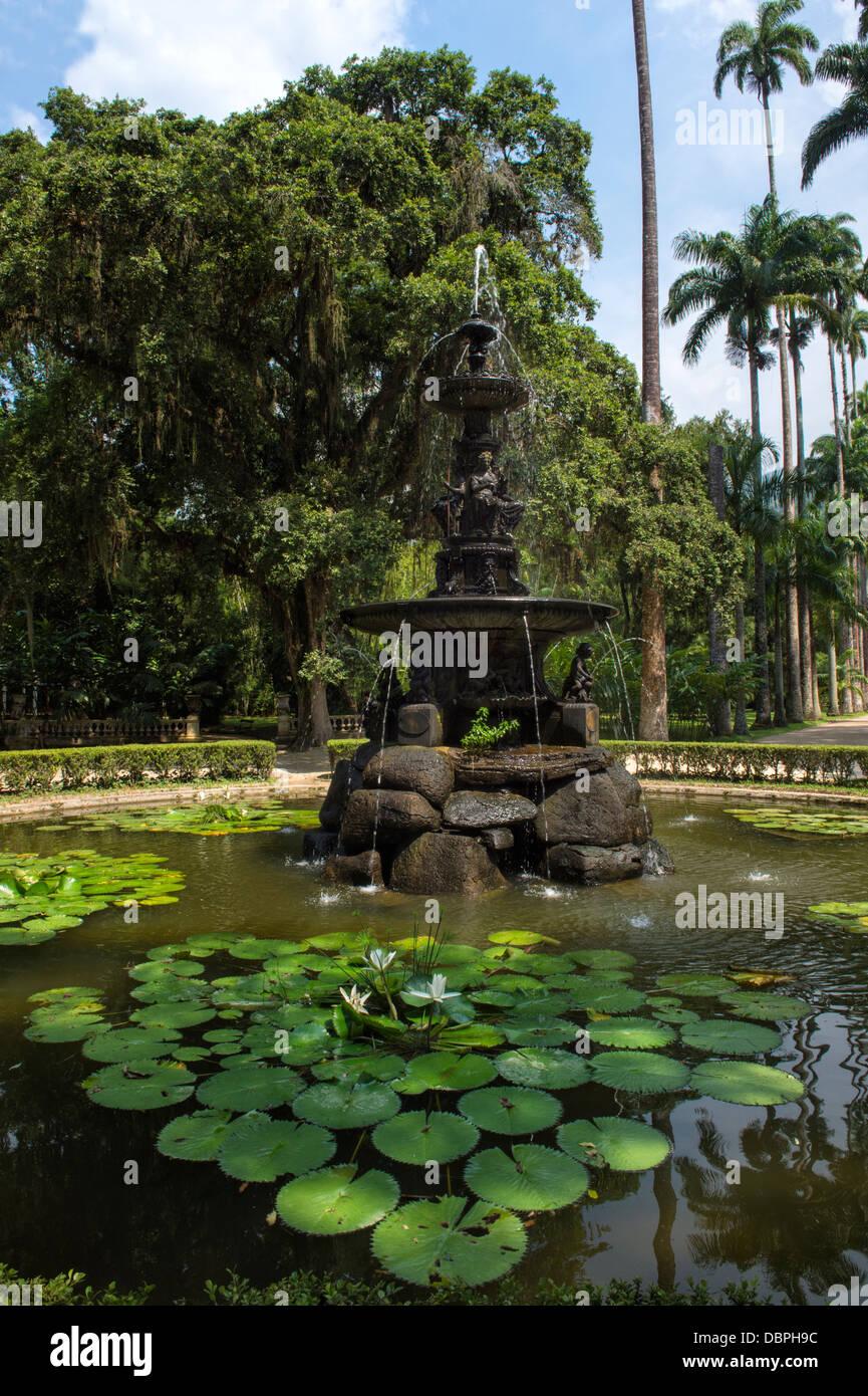 Botanical Gardens Rio De Janeiro Garden Ftempo