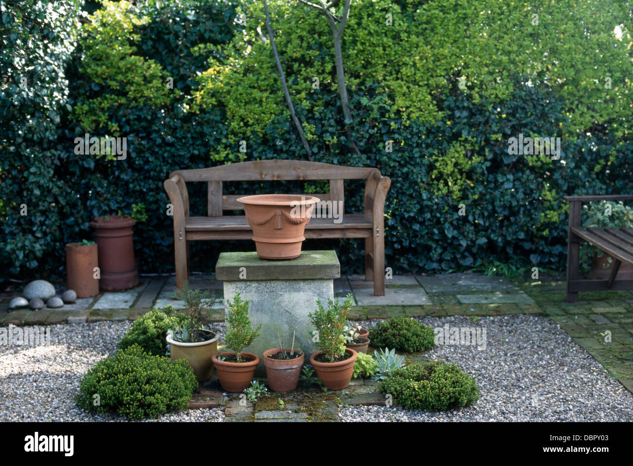 Small Planter Small Shrubs In Pots On Gravel Patio With Wooden Bench